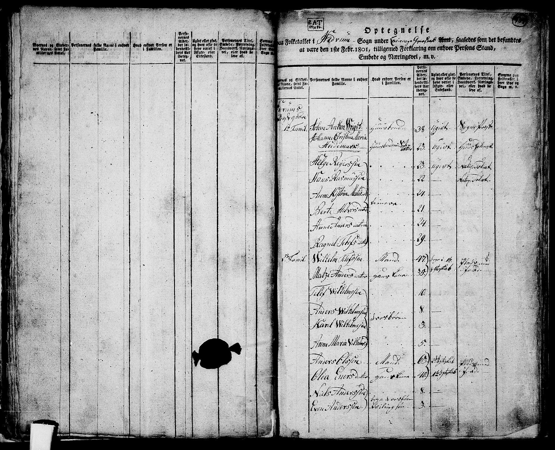 RA, Folketelling 1801 for 0727P Hedrum prestegjeld, 1801, s. 409a