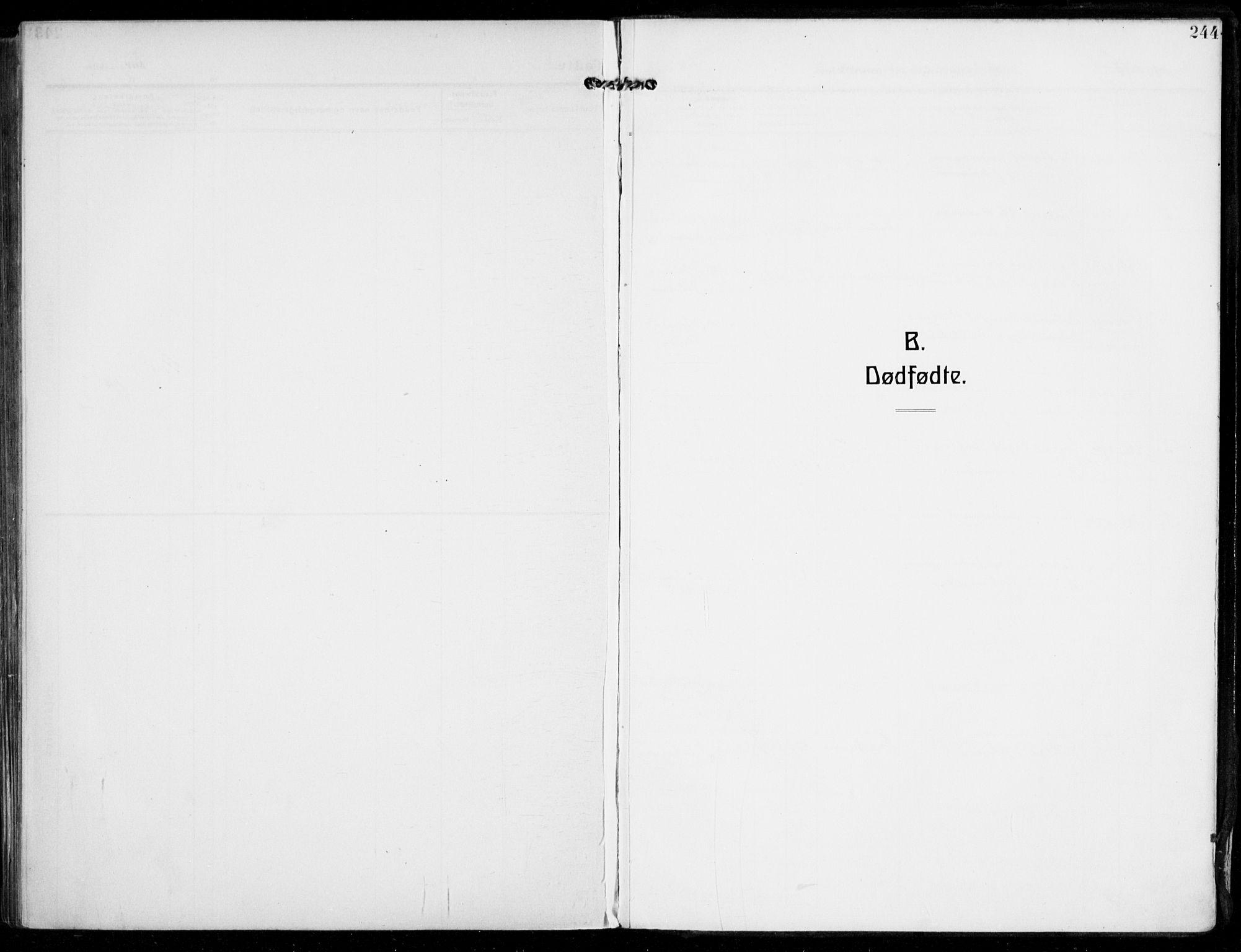 SAKO, Sandar kirkebøker, F/Fa/L0016: Ministerialbok nr. 16, 1909-1919, s. 244