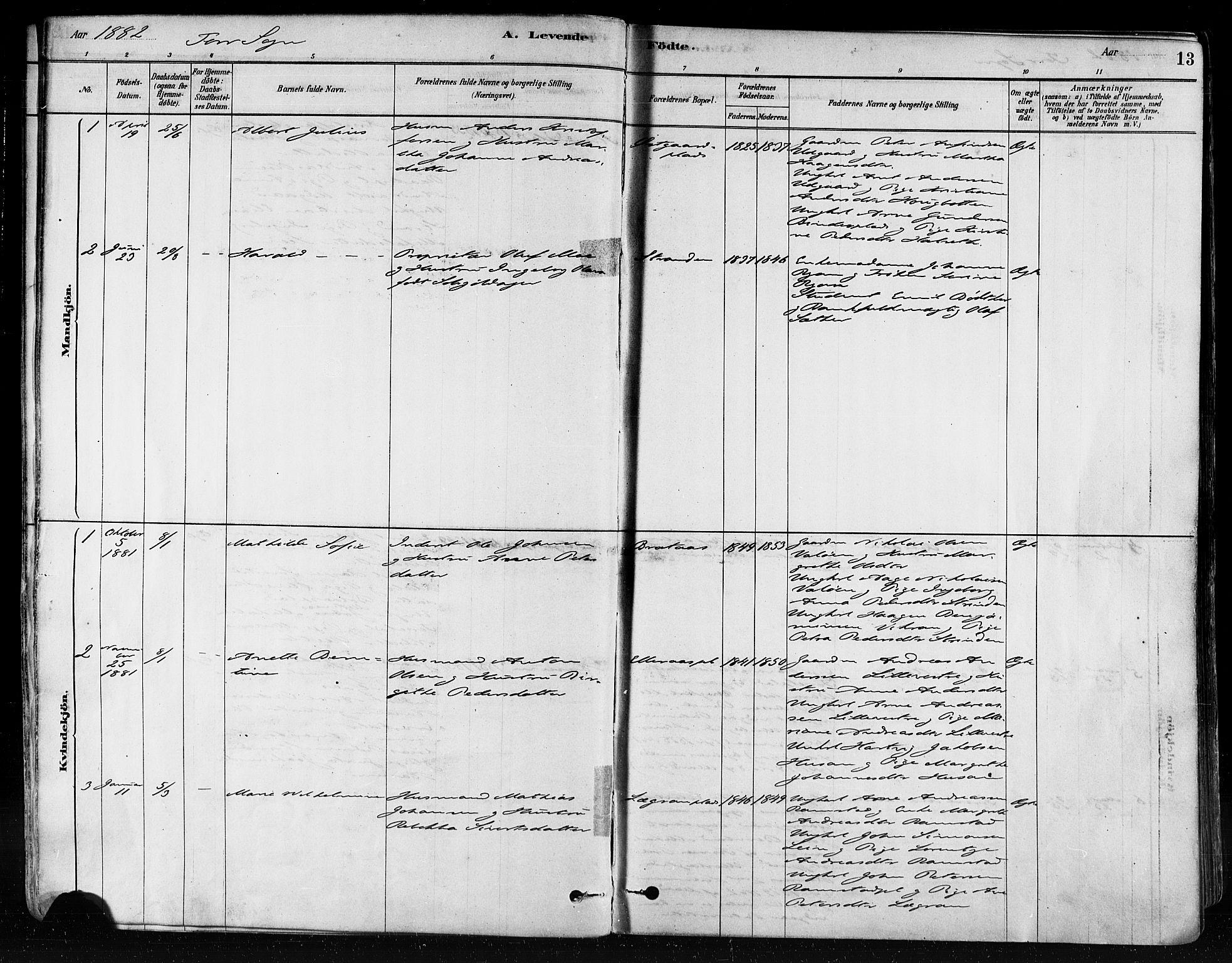 SAT, Ministerialprotokoller, klokkerbøker og fødselsregistre - Nord-Trøndelag, 746/L0448: Ministerialbok nr. 746A07 /1, 1878-1900, s. 13
