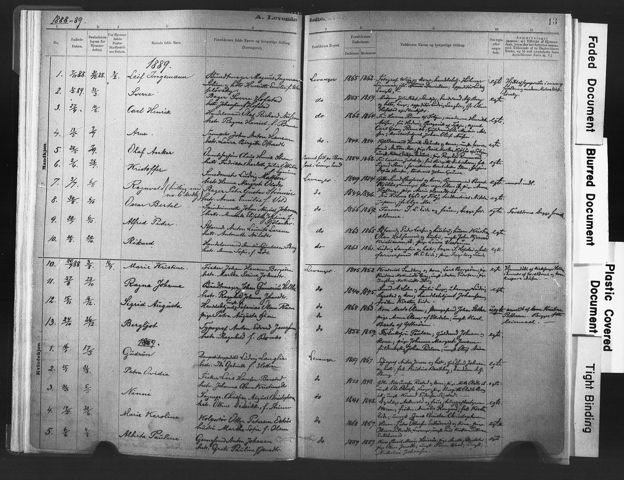 SAT, Ministerialprotokoller, klokkerbøker og fødselsregistre - Nord-Trøndelag, 720/L0189: Ministerialbok nr. 720A05, 1880-1911, s. 13