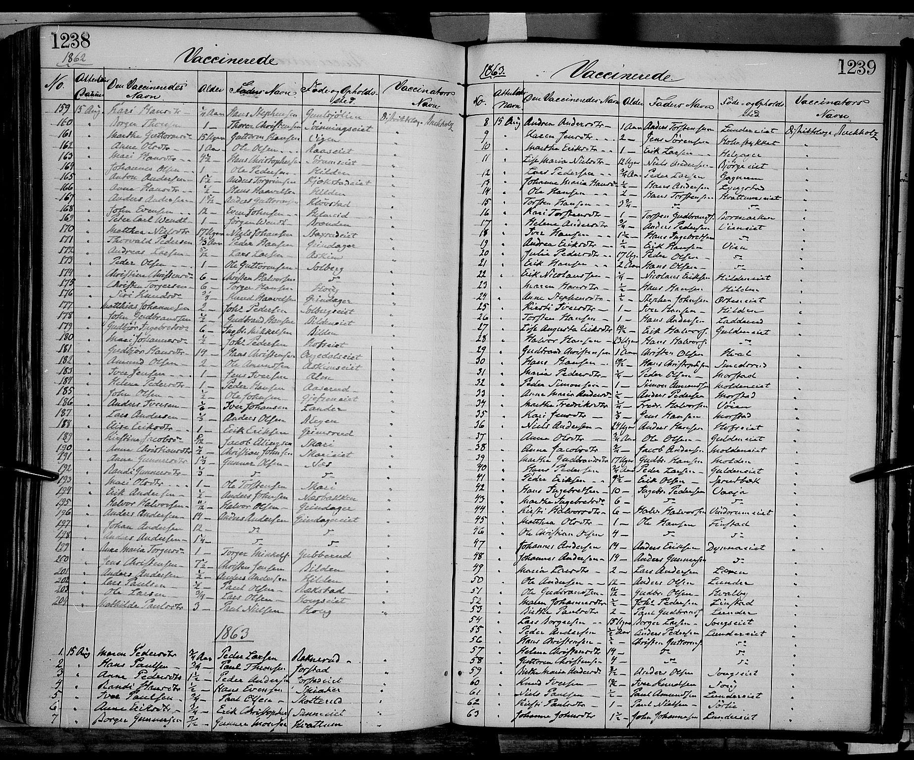 SAH, Gran prestekontor, Ministerialbok nr. 12, 1856-1874, s. 1238-1239