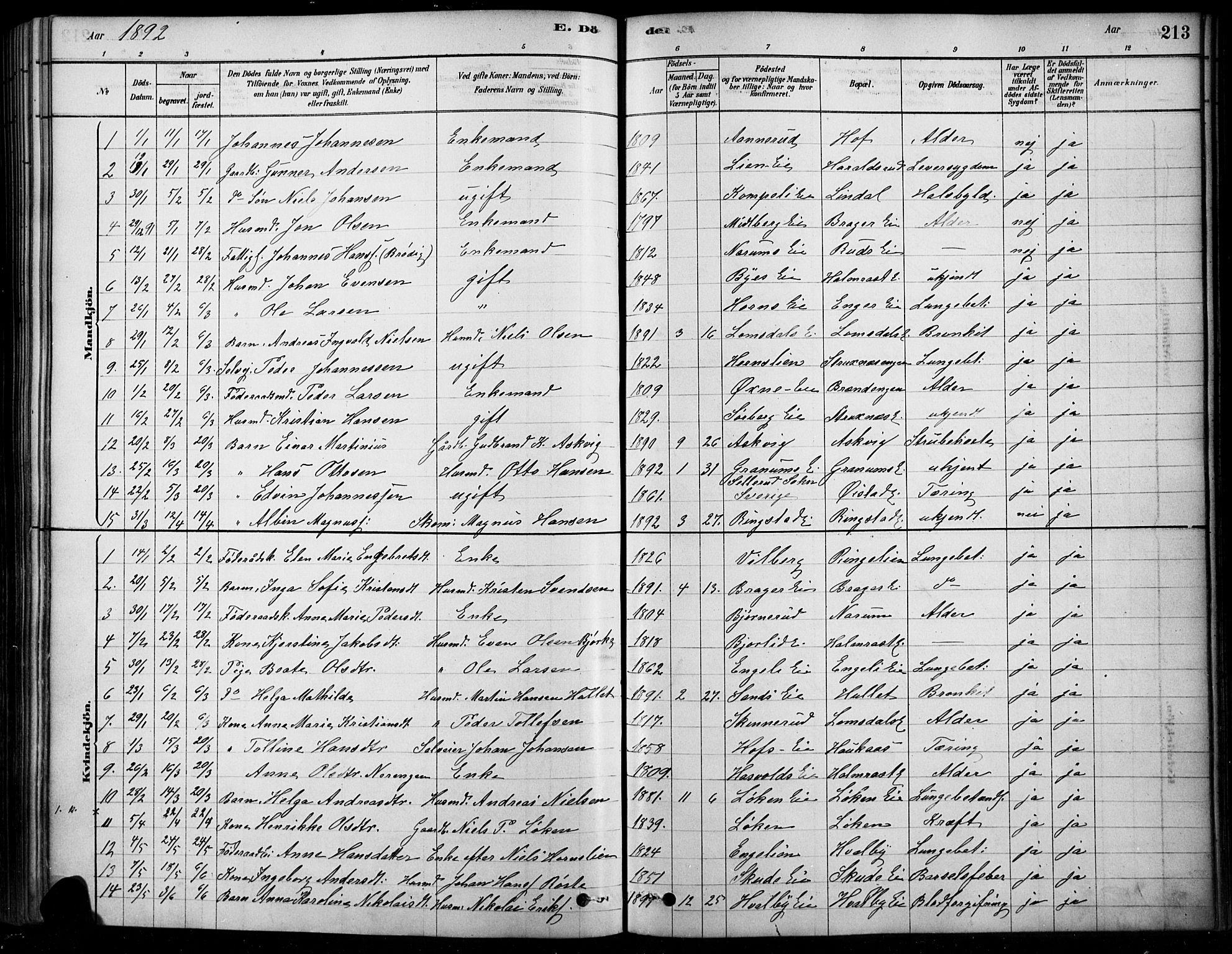 SAH, Søndre Land prestekontor, K/L0003: Ministerialbok nr. 3, 1878-1894, s. 213