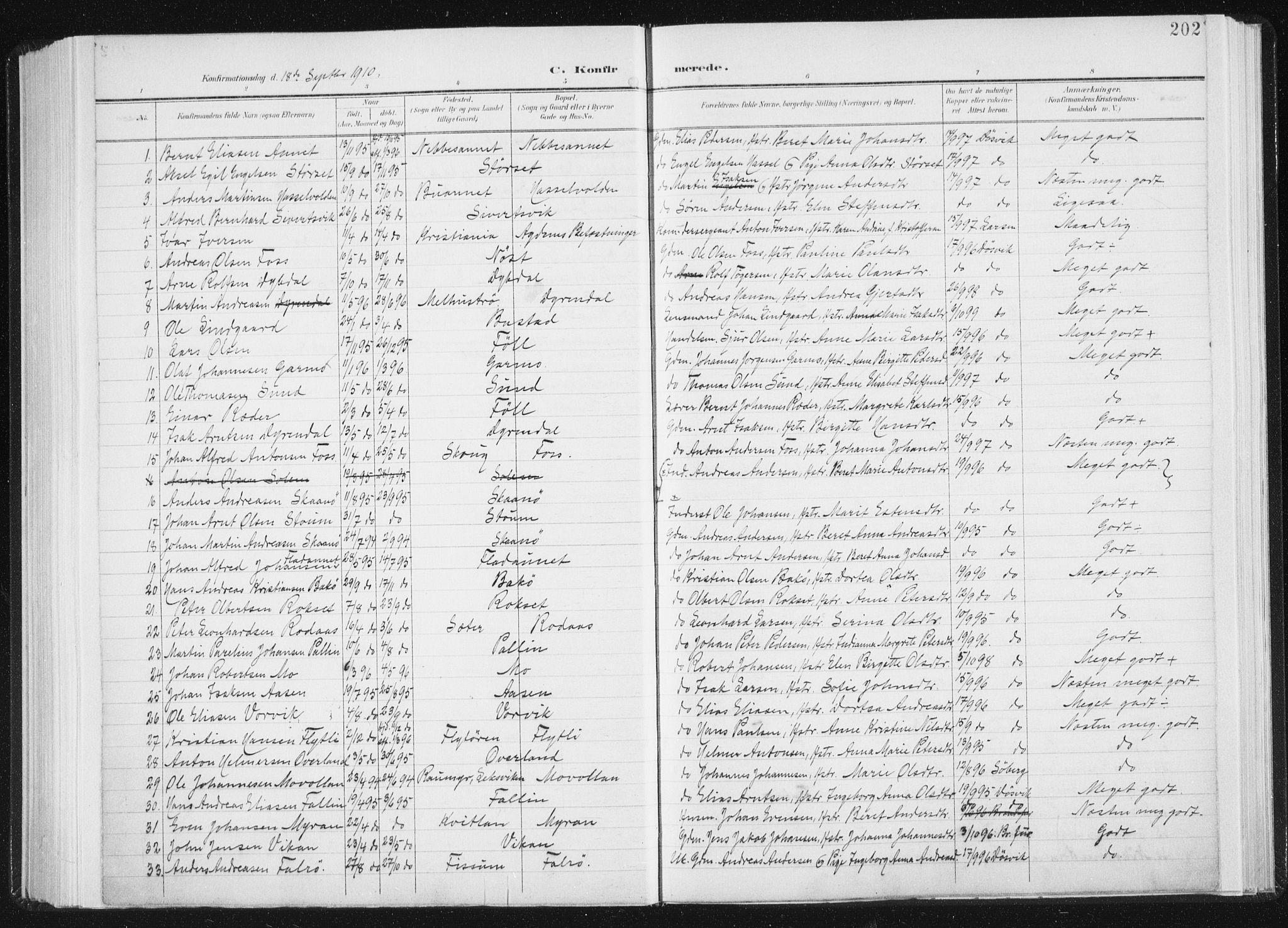 SAT, Ministerialprotokoller, klokkerbøker og fødselsregistre - Sør-Trøndelag, 647/L0635: Ministerialbok nr. 647A02, 1896-1911, s. 202