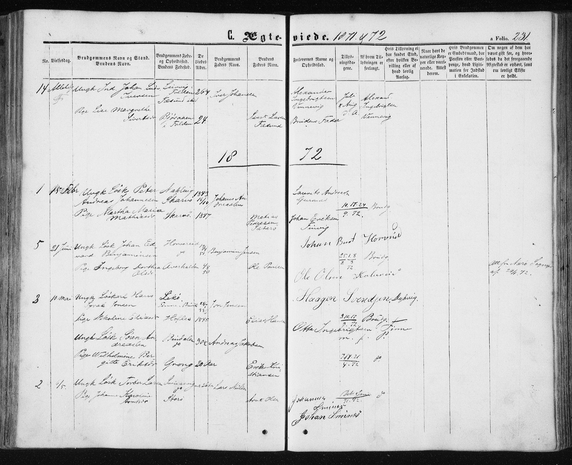 SAT, Ministerialprotokoller, klokkerbøker og fødselsregistre - Nord-Trøndelag, 780/L0641: Ministerialbok nr. 780A06, 1857-1874, s. 231