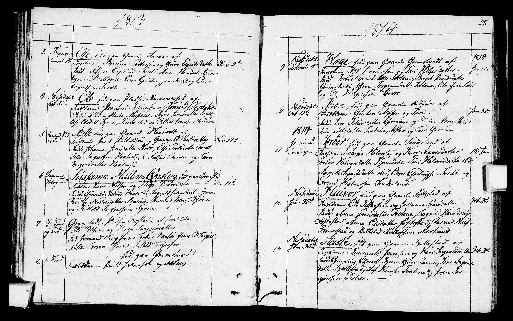 SAKO, Nissedal kirkebøker, F/Fa/L0001: Ministerialbok nr. I 1, 1811-1814, s. 28