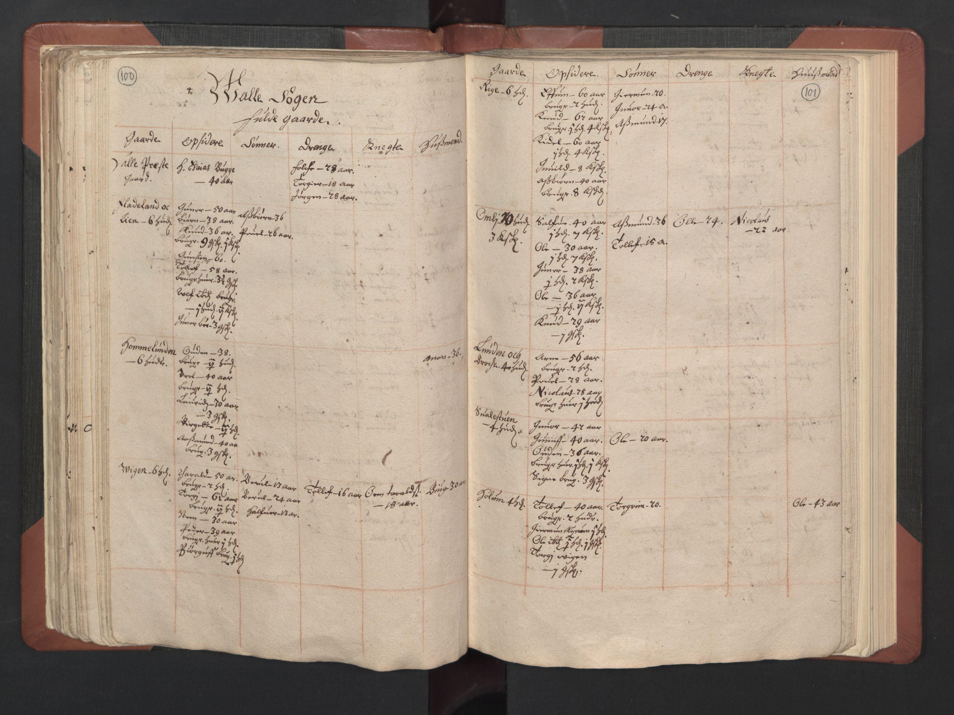 RA, Fogdenes og sorenskrivernes manntall 1664-1666, nr. 8: Råbyggelaget fogderi, 1664-1665, s. 100-101
