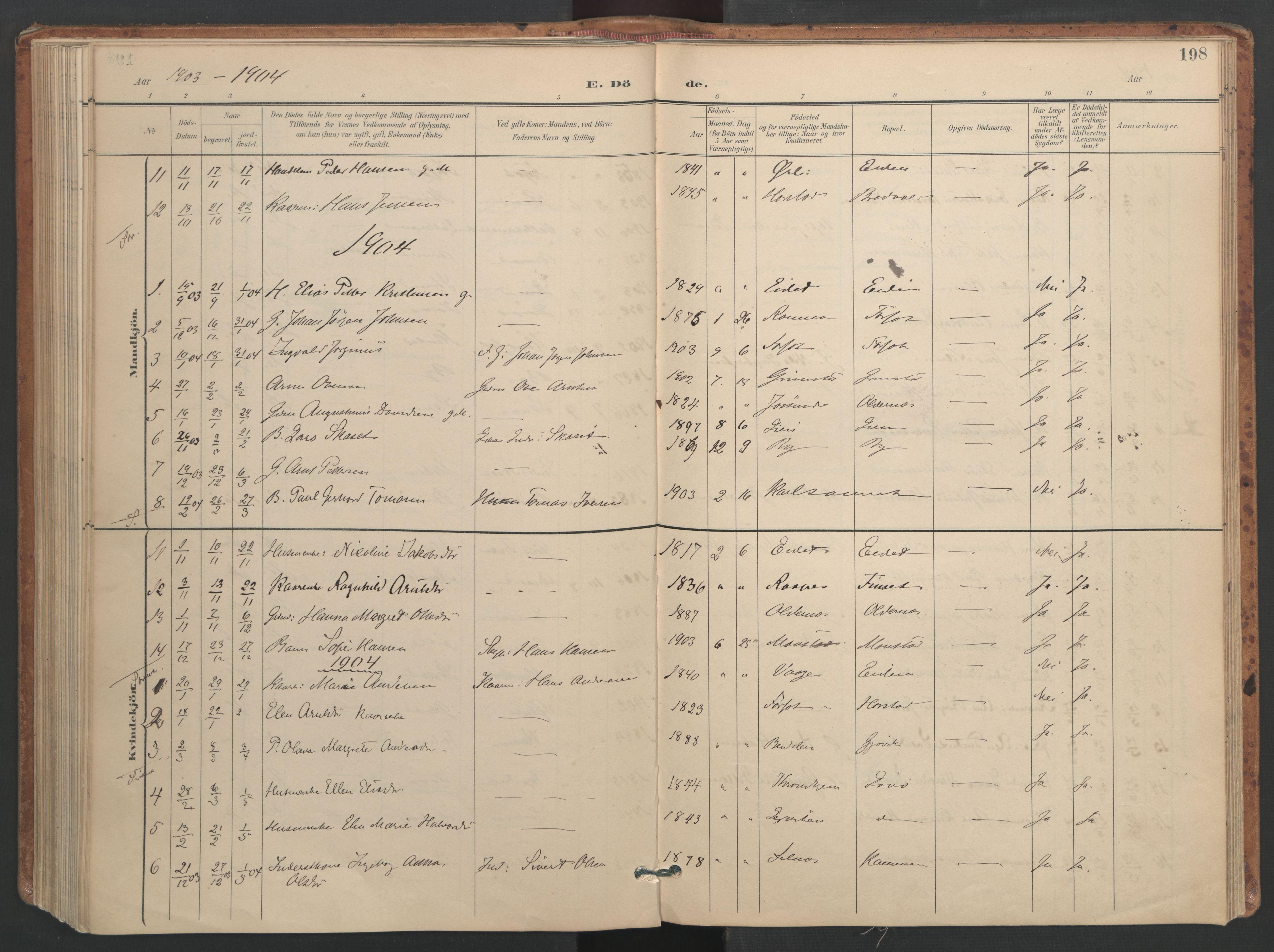 SAT, Ministerialprotokoller, klokkerbøker og fødselsregistre - Sør-Trøndelag, 655/L0681: Ministerialbok nr. 655A10, 1895-1907, s. 198