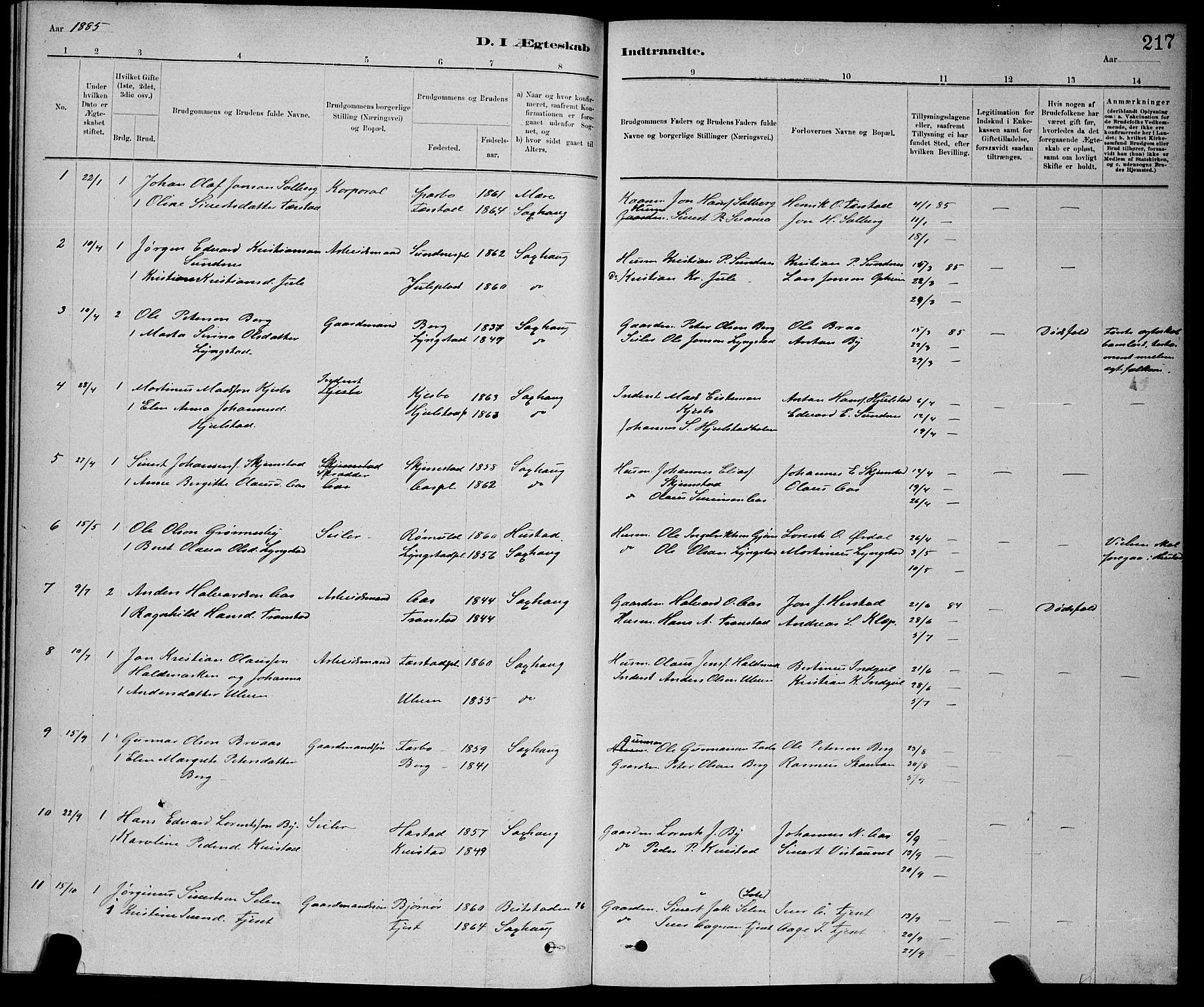 SAT, Ministerialprotokoller, klokkerbøker og fødselsregistre - Nord-Trøndelag, 730/L0301: Klokkerbok nr. 730C04, 1880-1897, s. 217