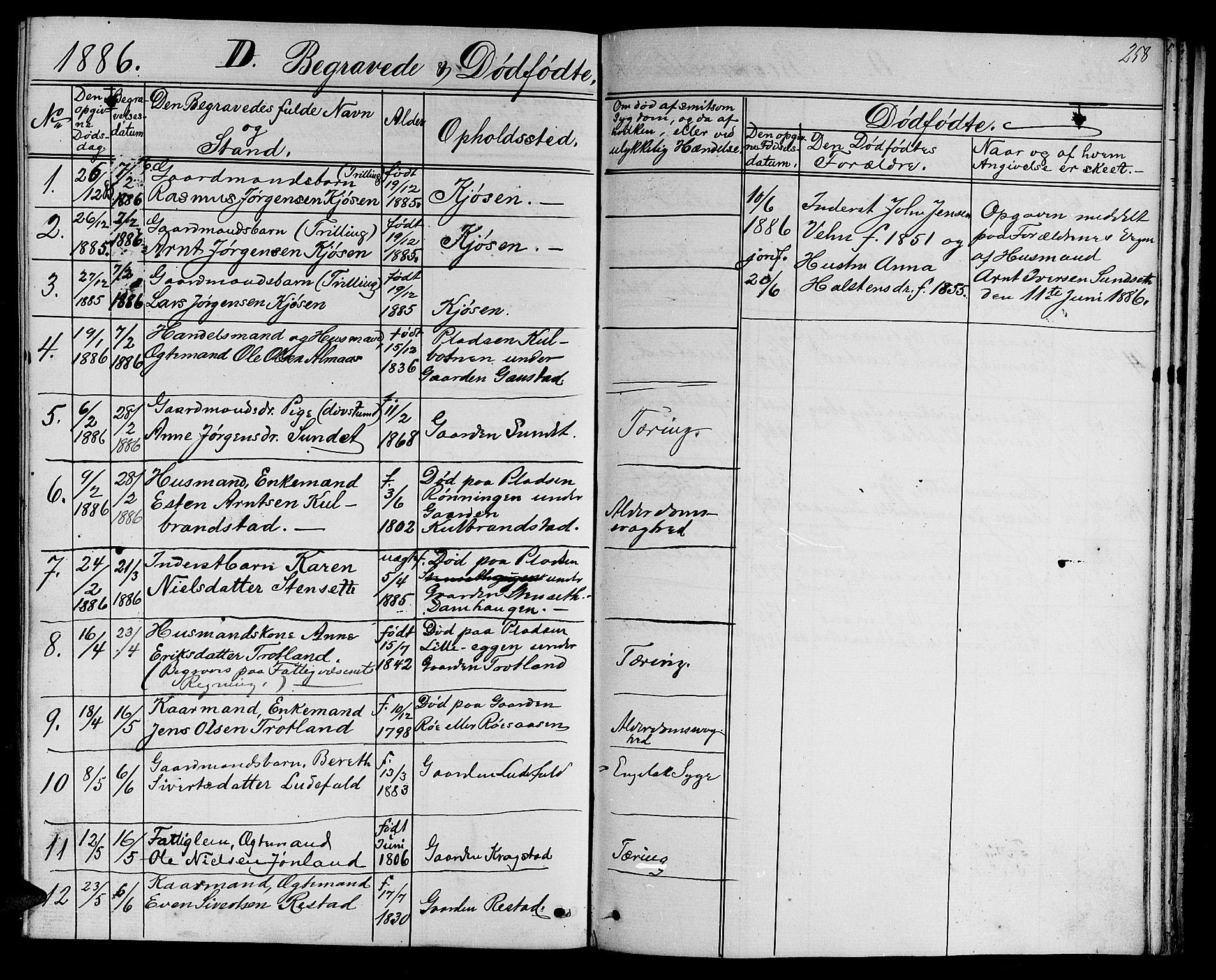 SAT, Ministerialprotokoller, klokkerbøker og fødselsregistre - Sør-Trøndelag, 694/L1131: Klokkerbok nr. 694C03, 1858-1886, s. 258