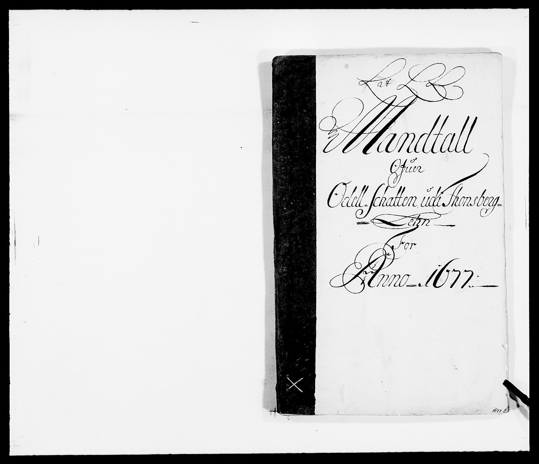 RA, Rentekammeret inntil 1814, Reviderte regnskaper, Fogderegnskap, R32/L1845: Fogderegnskap Jarlsberg grevskap, 1676-1678, s. 251