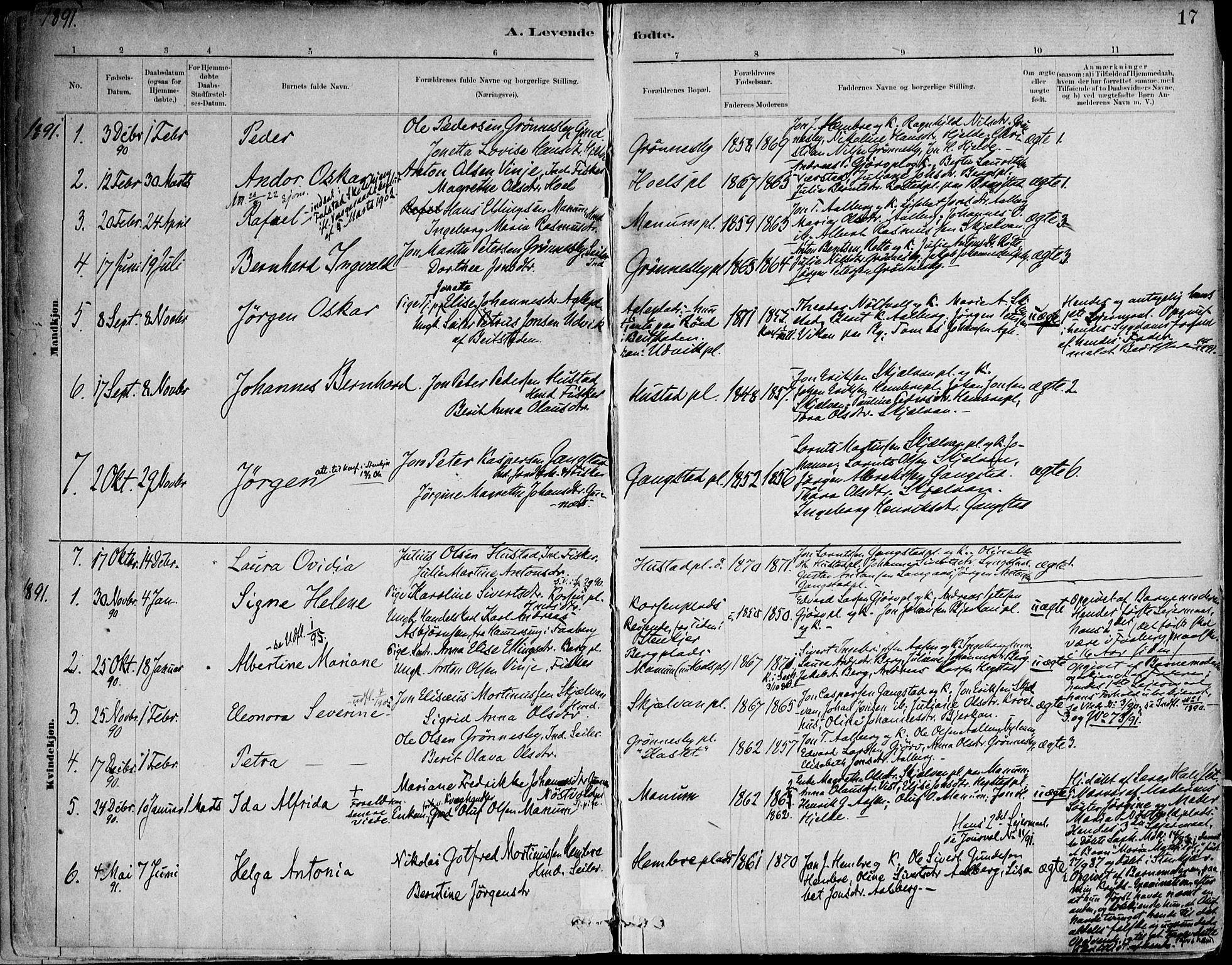 SAT, Ministerialprotokoller, klokkerbøker og fødselsregistre - Nord-Trøndelag, 732/L0316: Ministerialbok nr. 732A01, 1879-1921, s. 17