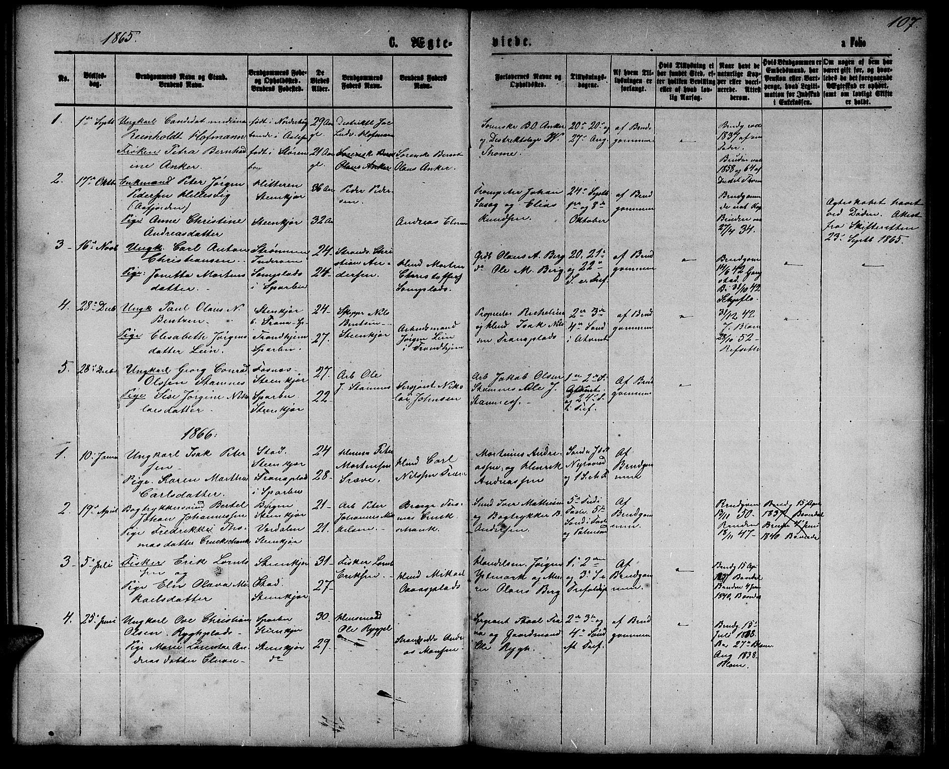 SAT, Ministerialprotokoller, klokkerbøker og fødselsregistre - Nord-Trøndelag, 739/L0373: Klokkerbok nr. 739C01, 1865-1882, s. 107