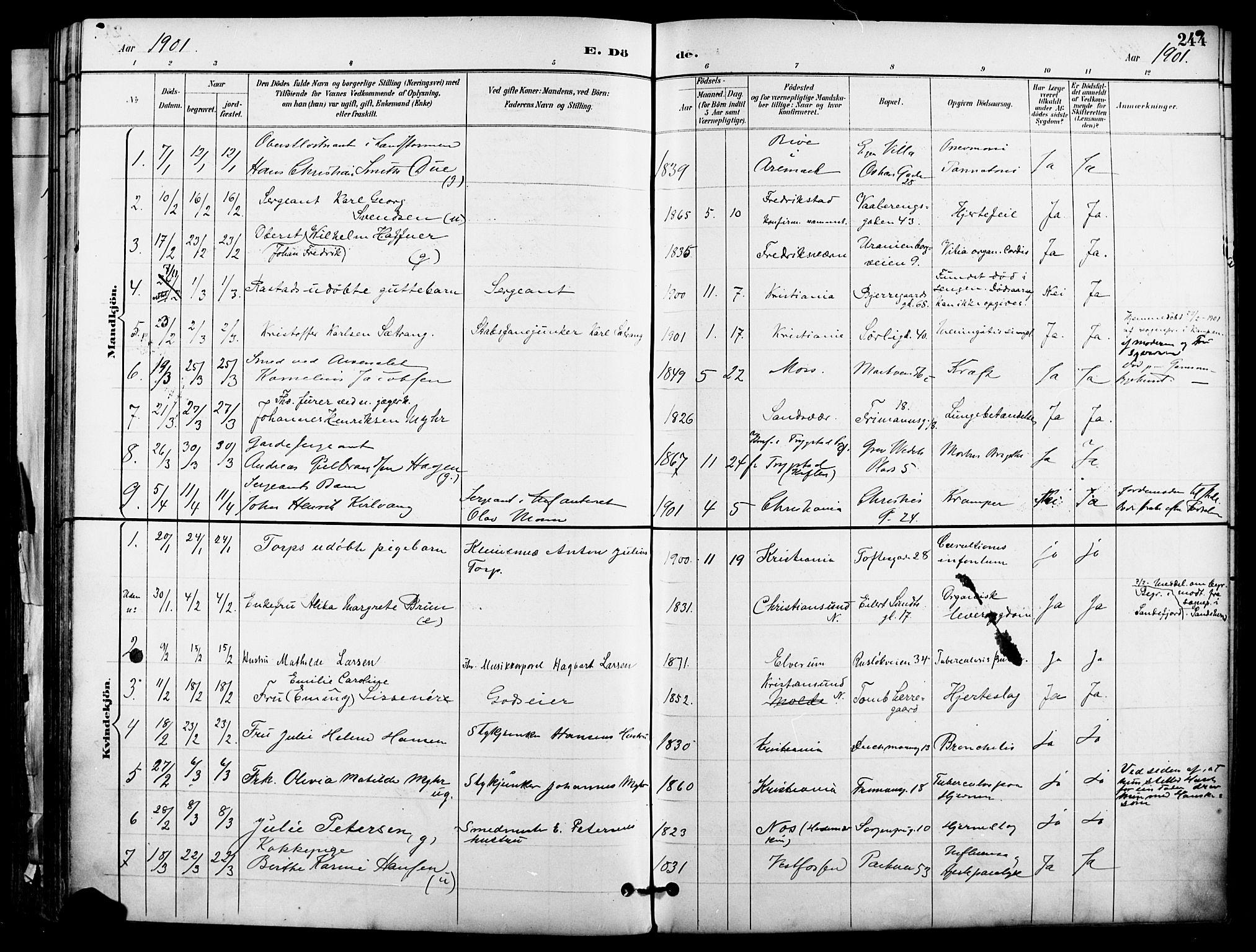 SAO, Garnisonsmenigheten Kirkebøker, F/Fa/L0013: Ministerialbok nr. 13, 1894-1904, s. 244