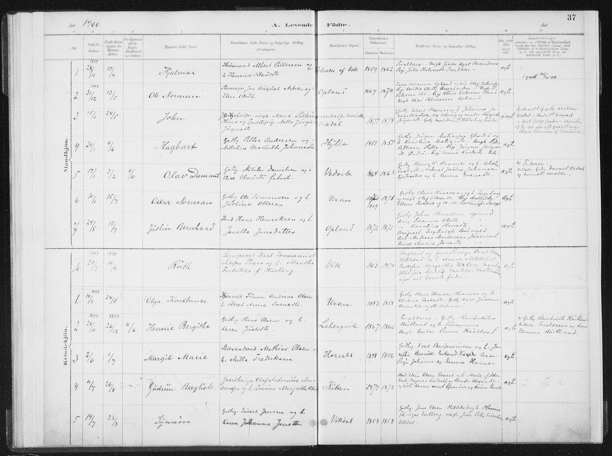 SAT, Ministerialprotokoller, klokkerbøker og fødselsregistre - Nord-Trøndelag, 771/L0597: Ministerialbok nr. 771A04, 1885-1910, s. 37