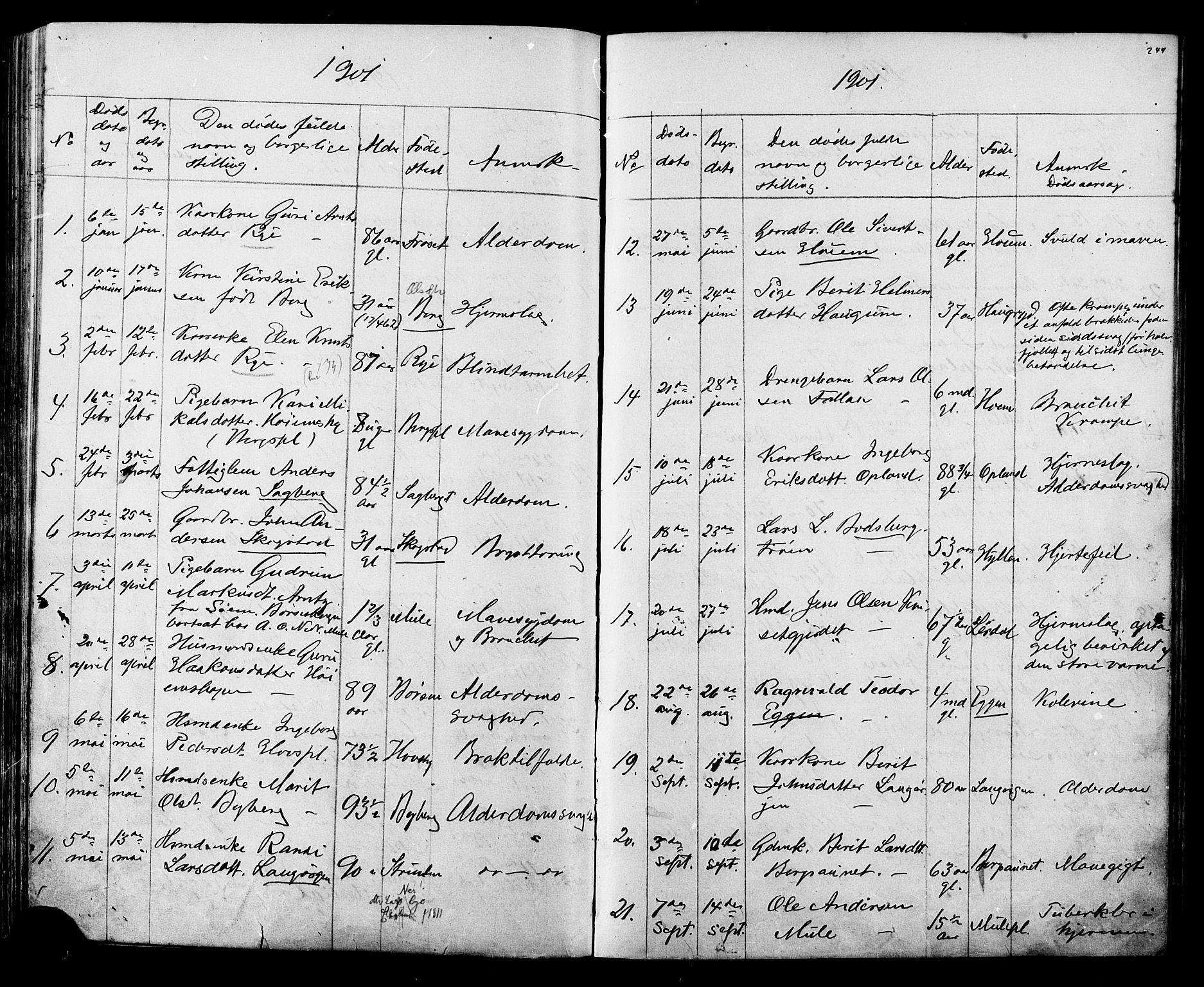 SAT, Ministerialprotokoller, klokkerbøker og fødselsregistre - Sør-Trøndelag, 612/L0387: Klokkerbok nr. 612C03, 1874-1908, s. 244