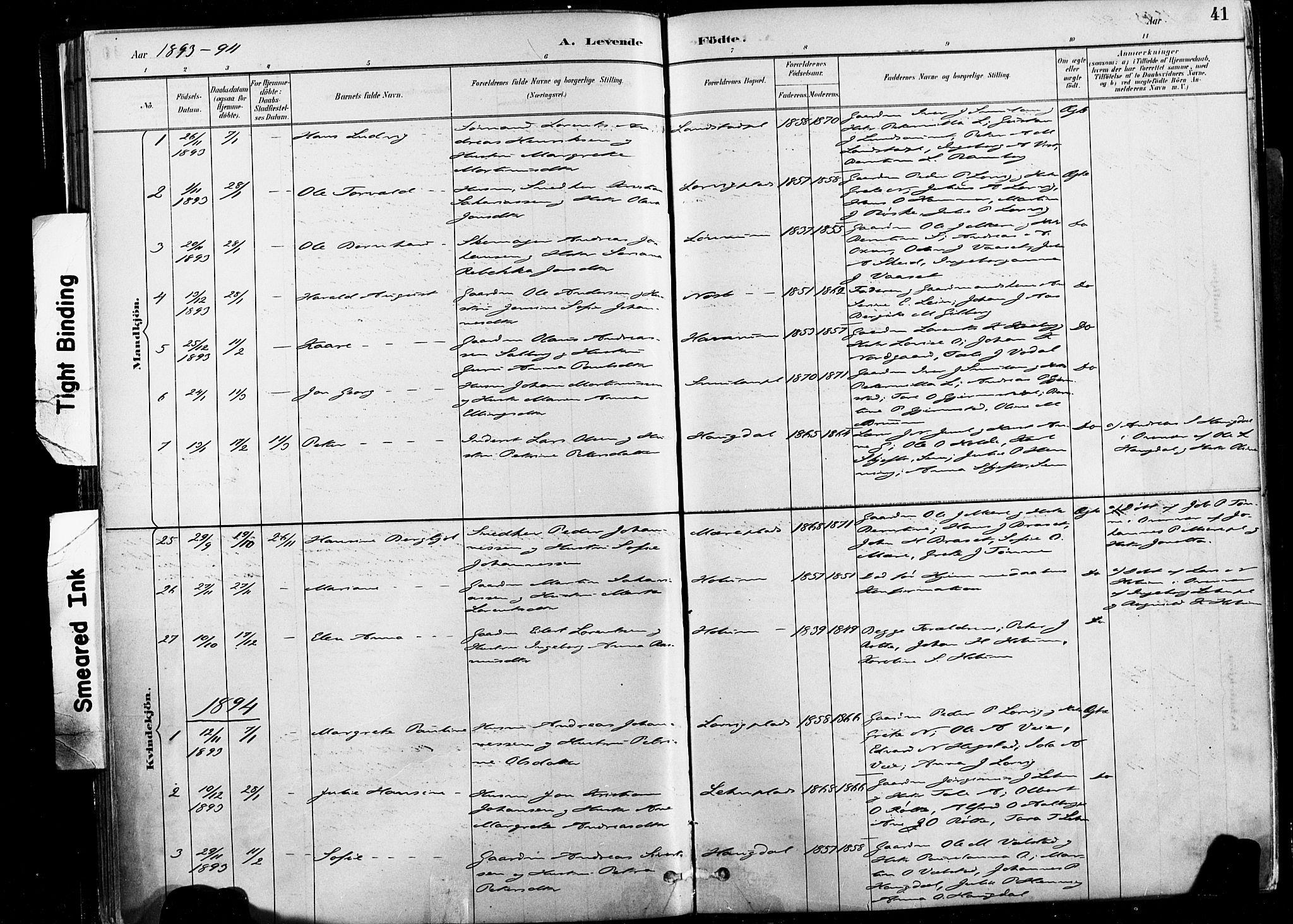 SAT, Ministerialprotokoller, klokkerbøker og fødselsregistre - Nord-Trøndelag, 735/L0351: Ministerialbok nr. 735A10, 1884-1908, s. 41
