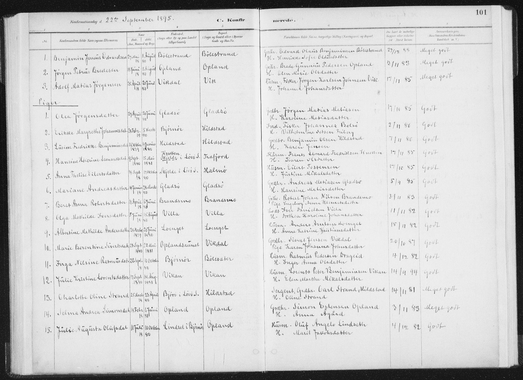 SAT, Ministerialprotokoller, klokkerbøker og fødselsregistre - Nord-Trøndelag, 771/L0597: Ministerialbok nr. 771A04, 1885-1910, s. 101