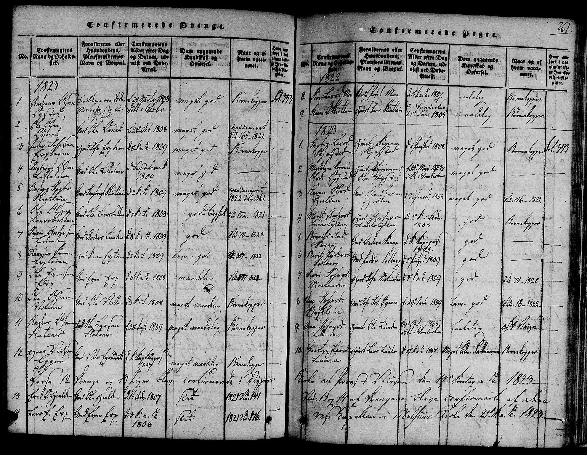 SAT, Ministerialprotokoller, klokkerbøker og fødselsregistre - Sør-Trøndelag, 691/L1067: Ministerialbok nr. 691A03 /3, 1816-1826, s. 261