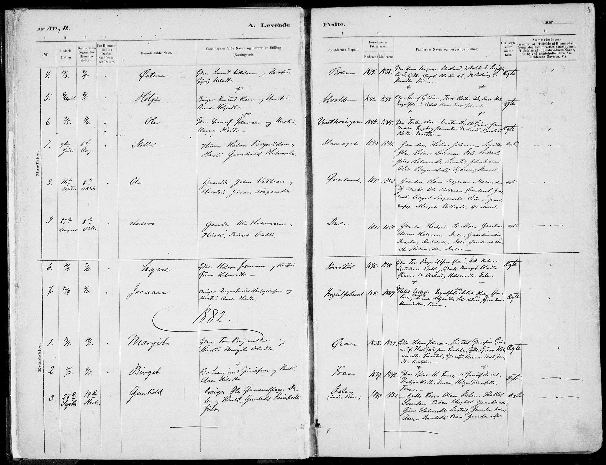 SAKO, Rjukan kirkebøker, F/Fa/L0001: Ministerialbok nr. 1, 1878-1912, s. 4