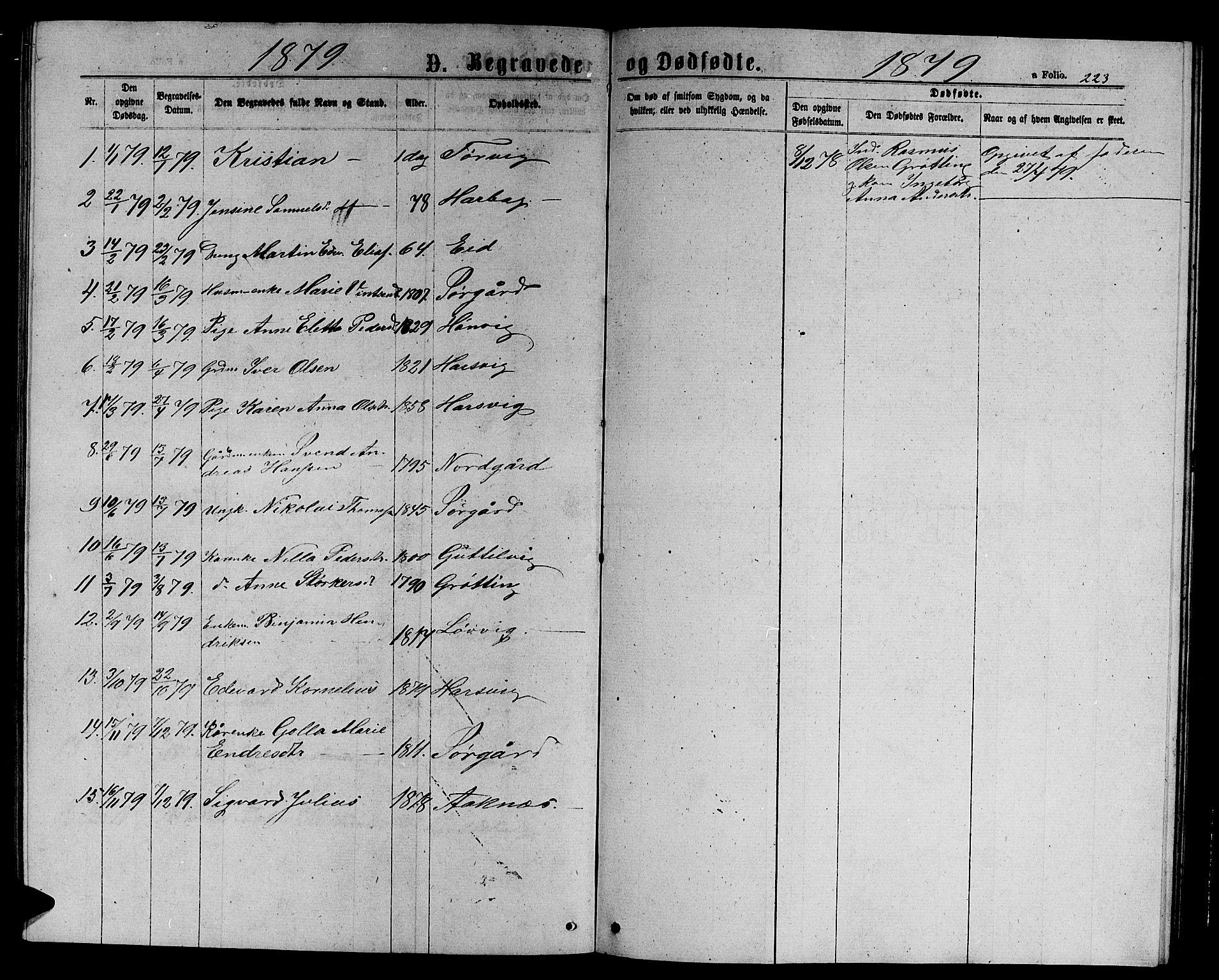 SAT, Ministerialprotokoller, klokkerbøker og fødselsregistre - Sør-Trøndelag, 656/L0695: Klokkerbok nr. 656C01, 1867-1889, s. 223