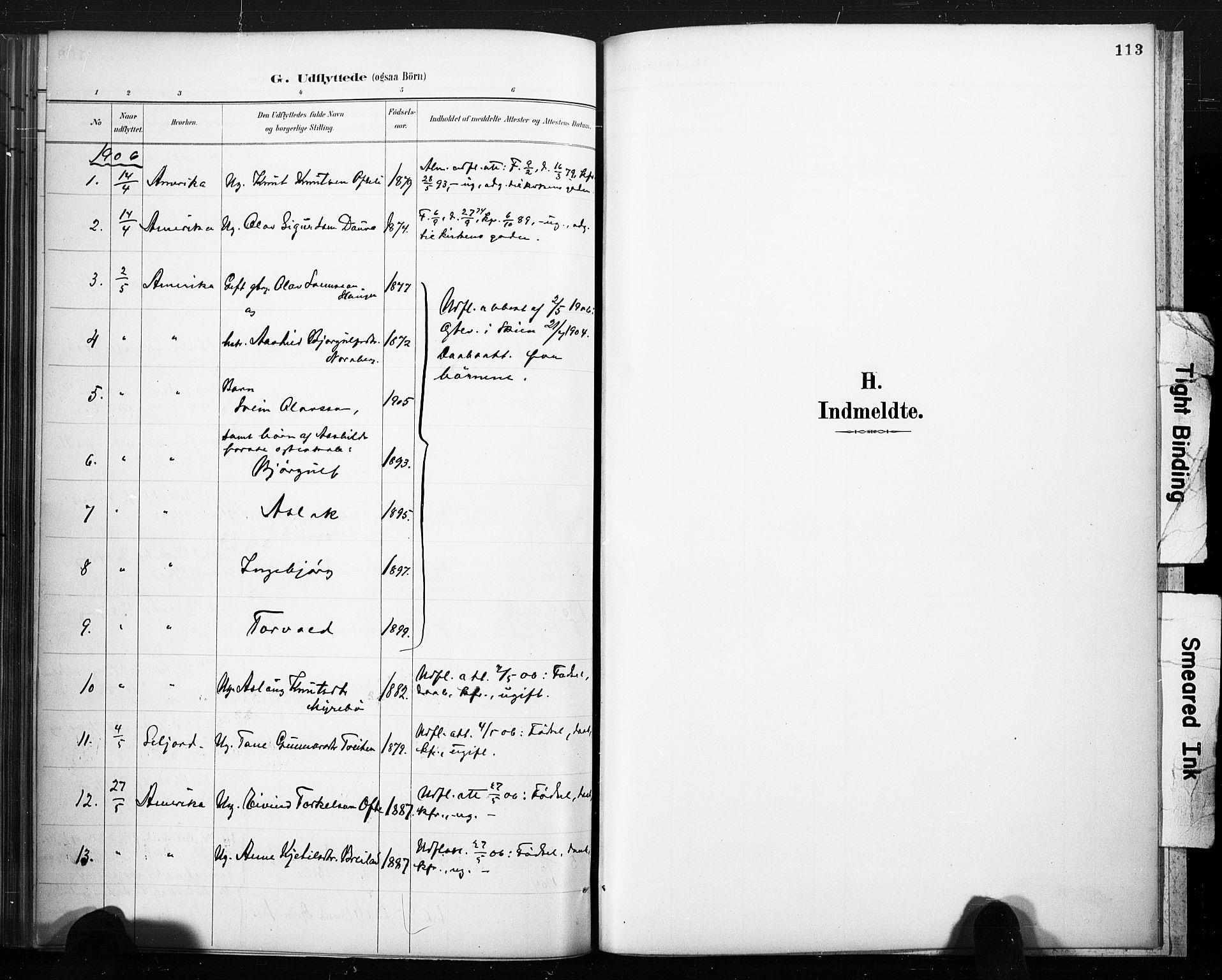 SAKO, Lårdal kirkebøker, F/Fc/L0002: Ministerialbok nr. III 2, 1887-1906, s. 113