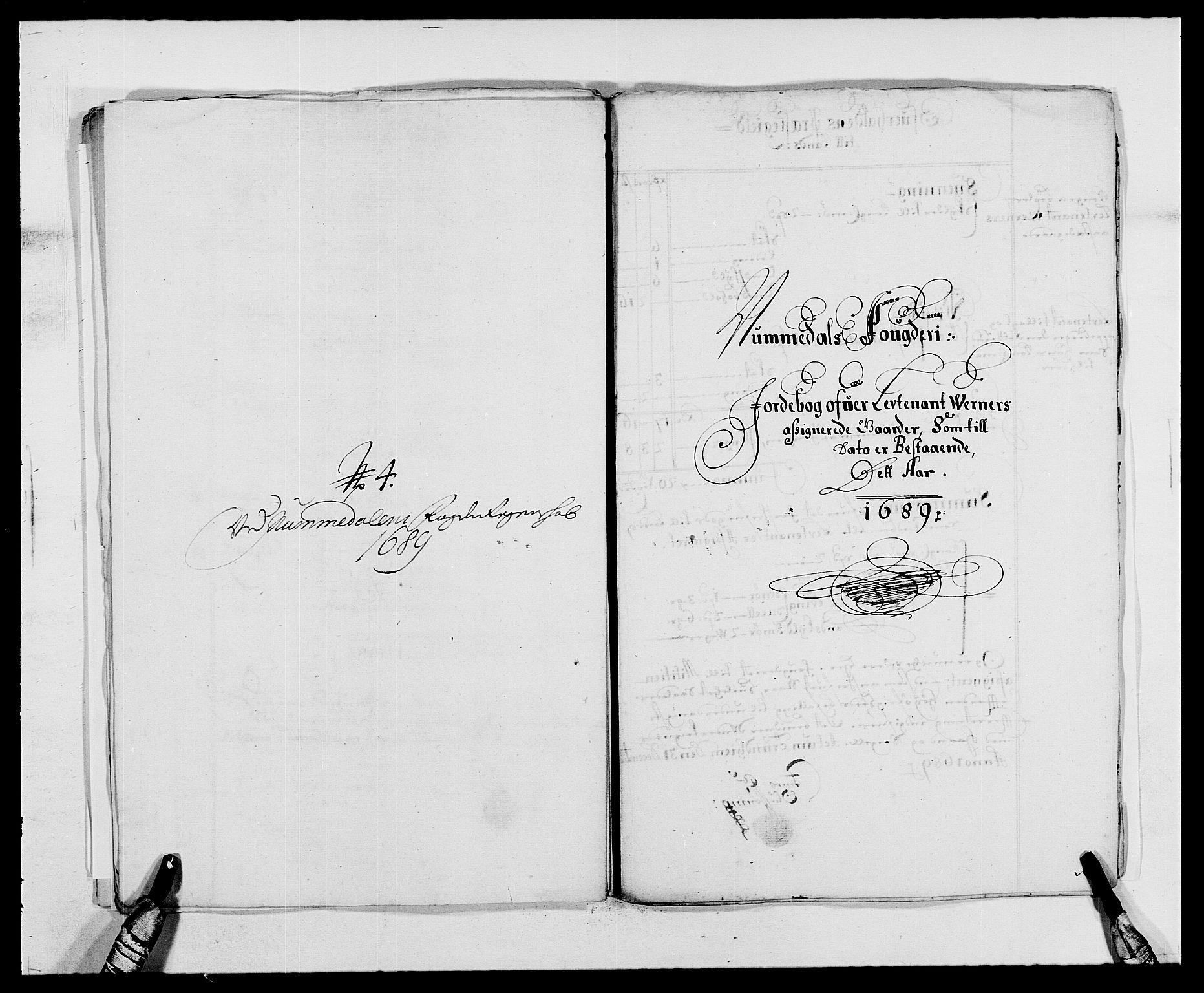RA, Rentekammeret inntil 1814, Reviderte regnskaper, Fogderegnskap, R64/L4422: Fogderegnskap Namdal, 1687-1689, s. 297