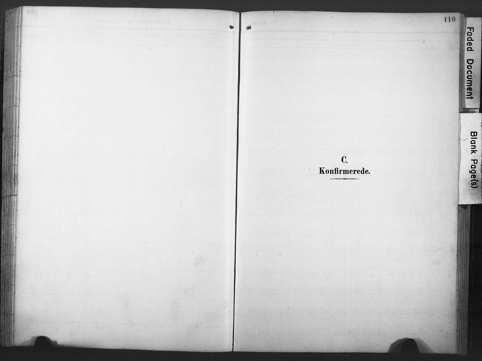 SAT, Ministerialprotokoller, klokkerbøker og fødselsregistre - Nord-Trøndelag, 789/L0706: Klokkerbok nr. 789C01, 1888-1931, s. 110