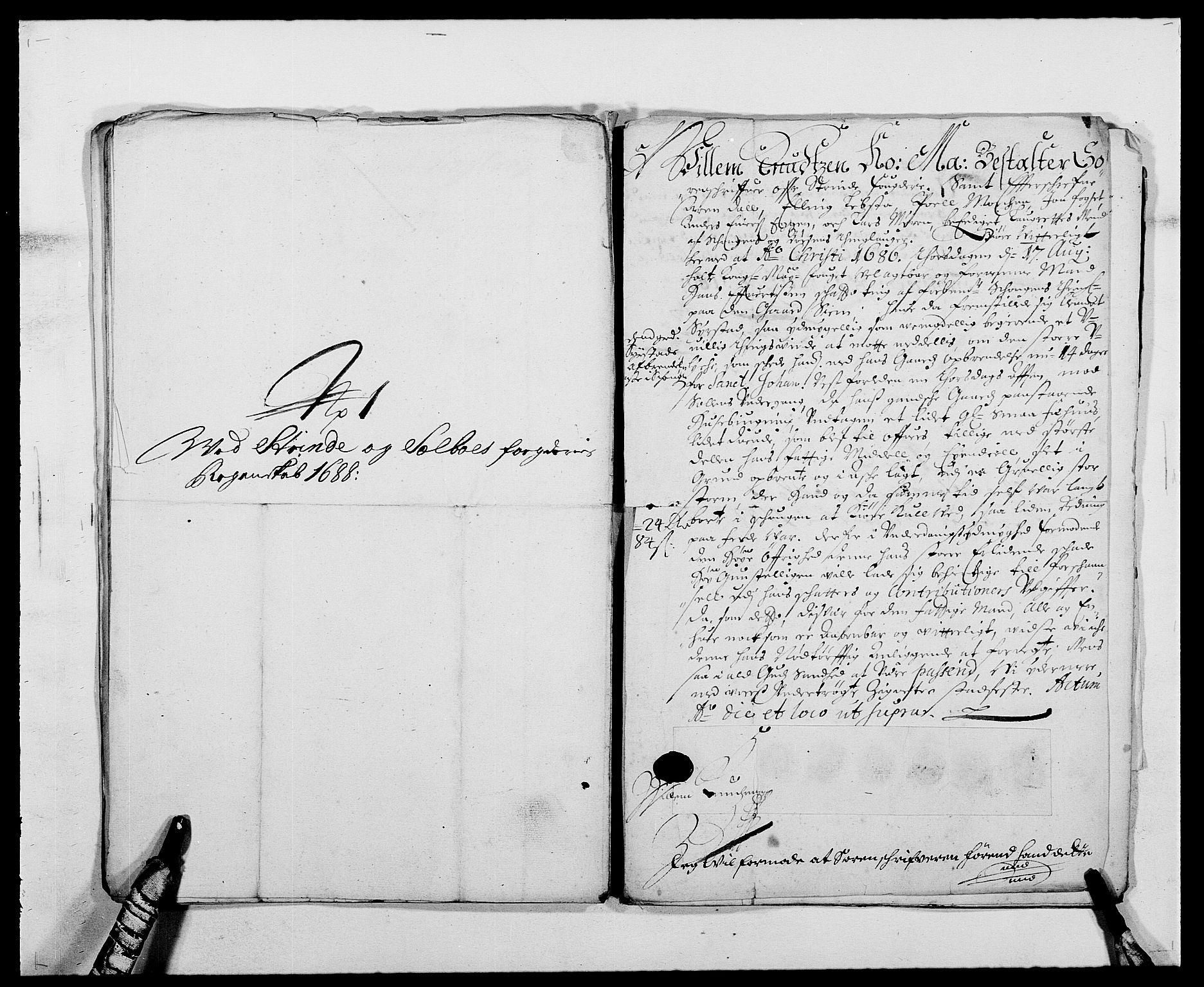 RA, Rentekammeret inntil 1814, Reviderte regnskaper, Fogderegnskap, R61/L4101: Fogderegnskap Strinda og Selbu, 1687-1688, s. 254