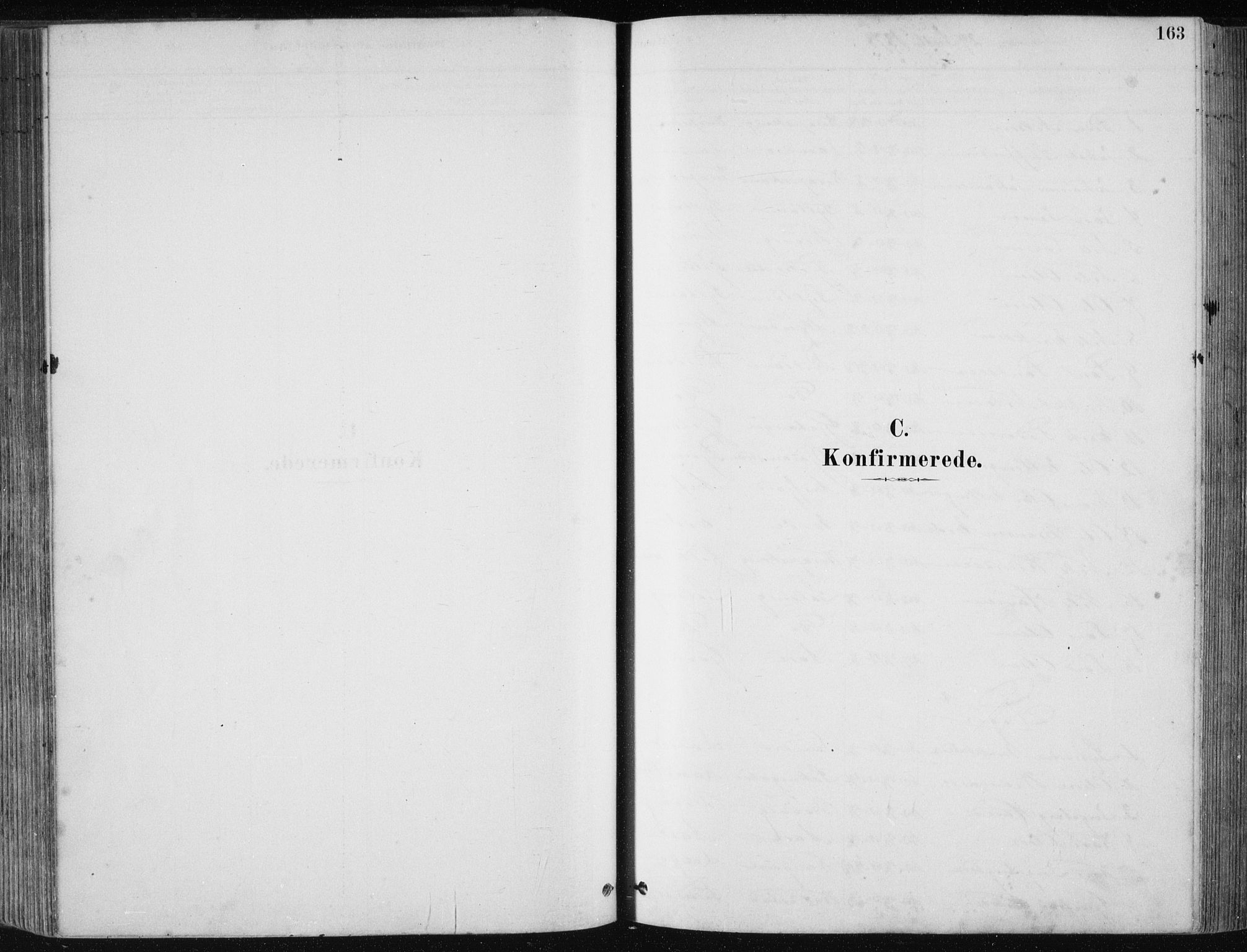 SAB, Fjell sokneprestembete, H/Haa: Ministerialbok nr. A  8, 1878-1898, s. 163