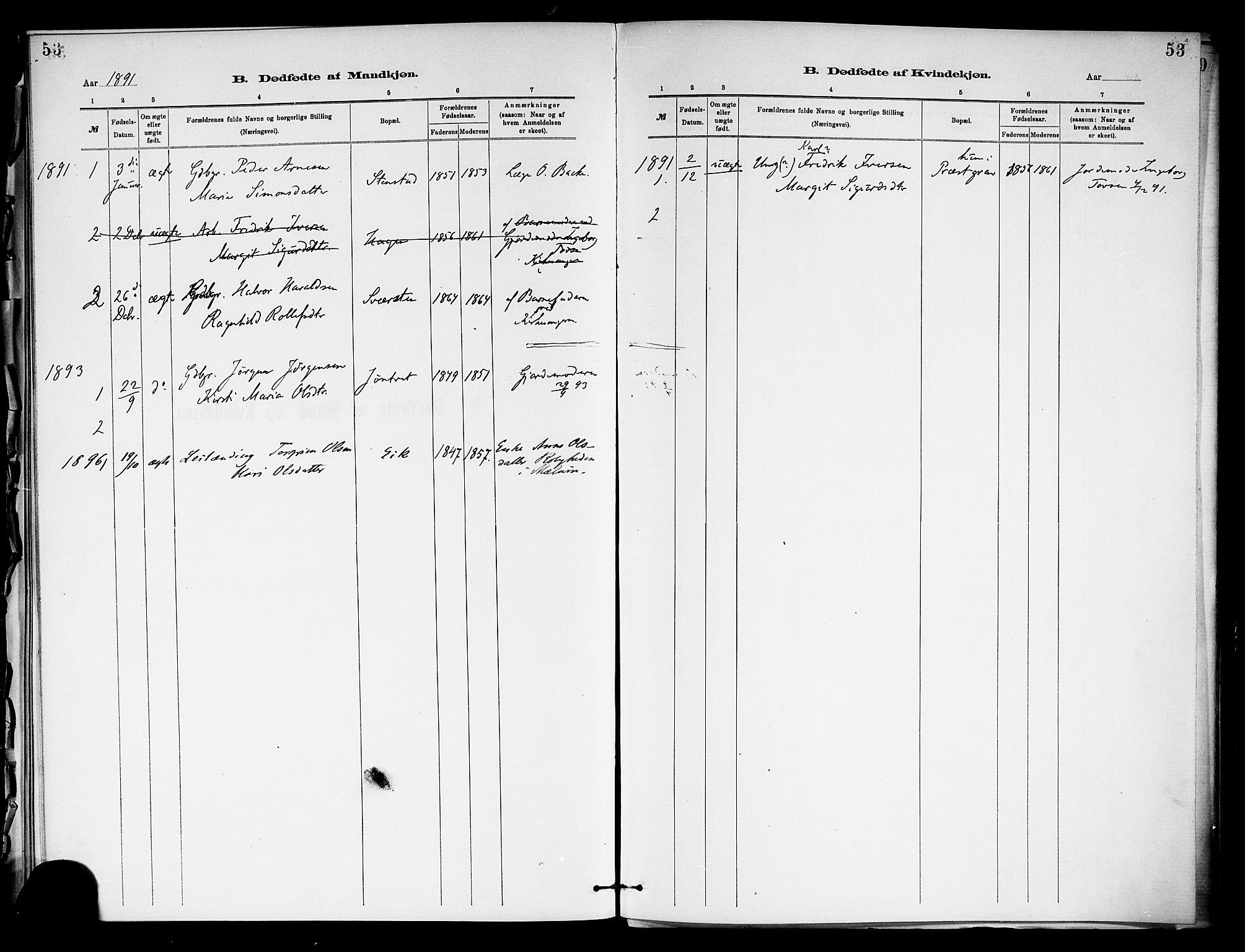 SAKO, Holla kirkebøker, F/Fa/L0009: Ministerialbok nr. 9, 1881-1897, s. 53