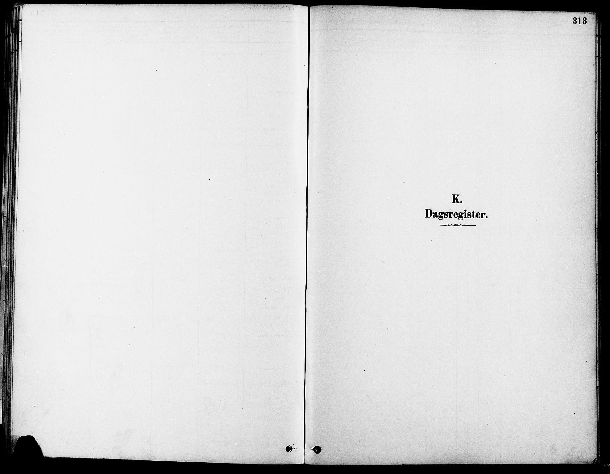 SAO, Gamle Aker prestekontor Kirkebøker, F/L0007: Ministerialbok nr. 7, 1882-1890, s. 313