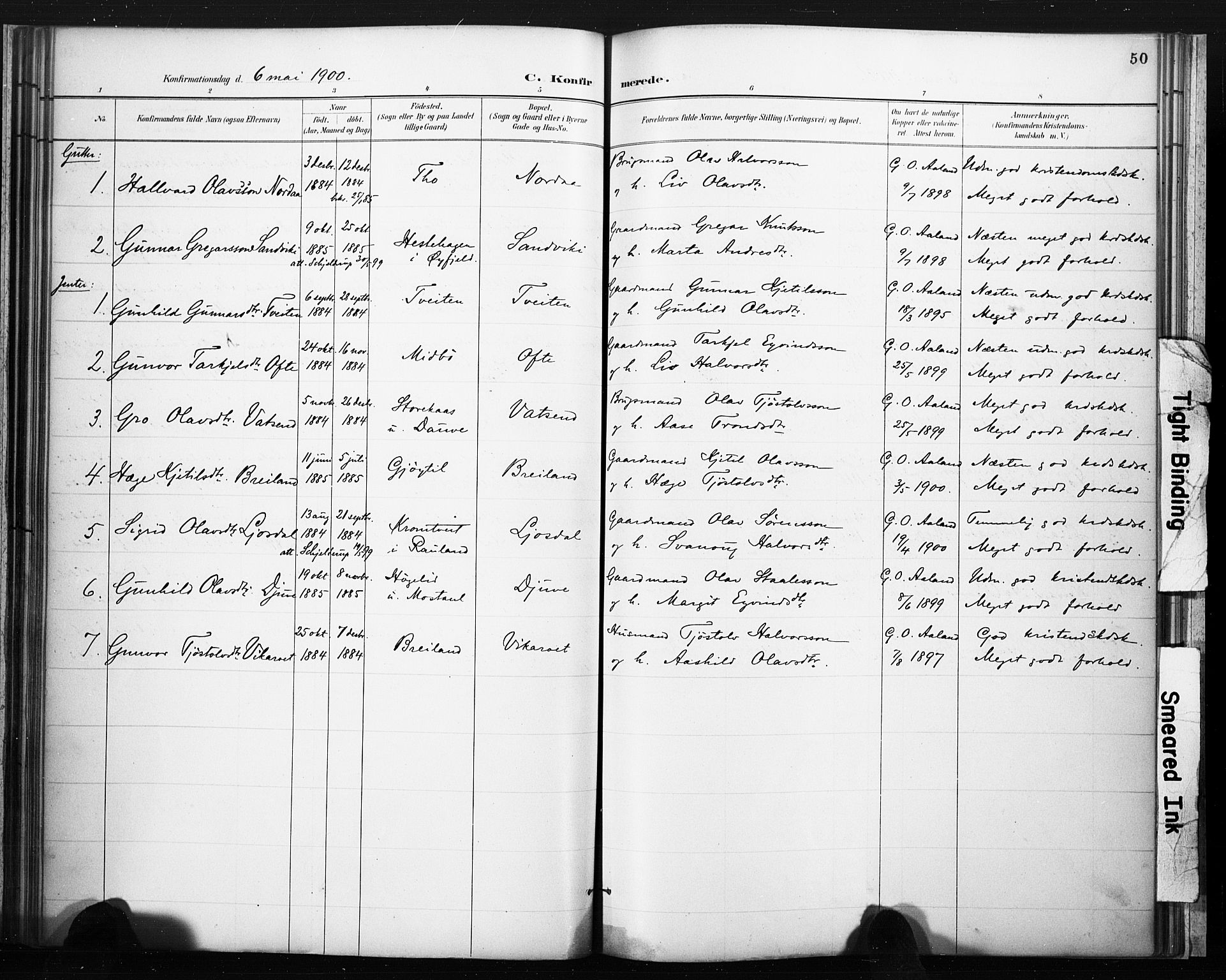 SAKO, Lårdal kirkebøker, F/Fc/L0002: Ministerialbok nr. III 2, 1887-1906, s. 50