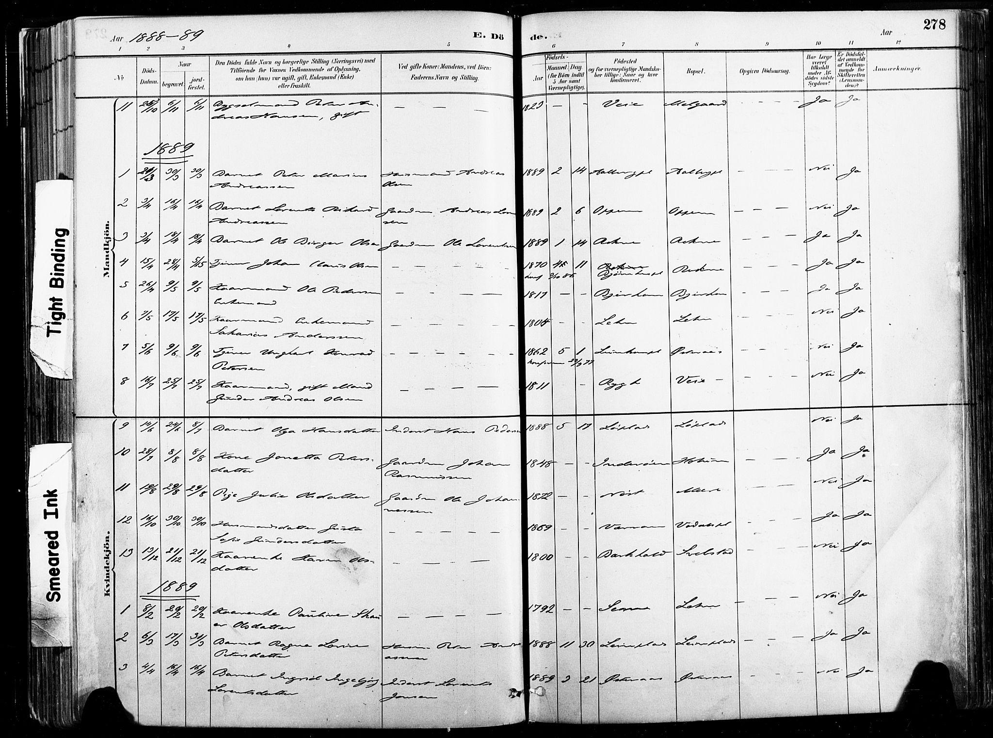 SAT, Ministerialprotokoller, klokkerbøker og fødselsregistre - Nord-Trøndelag, 735/L0351: Ministerialbok nr. 735A10, 1884-1908, s. 278