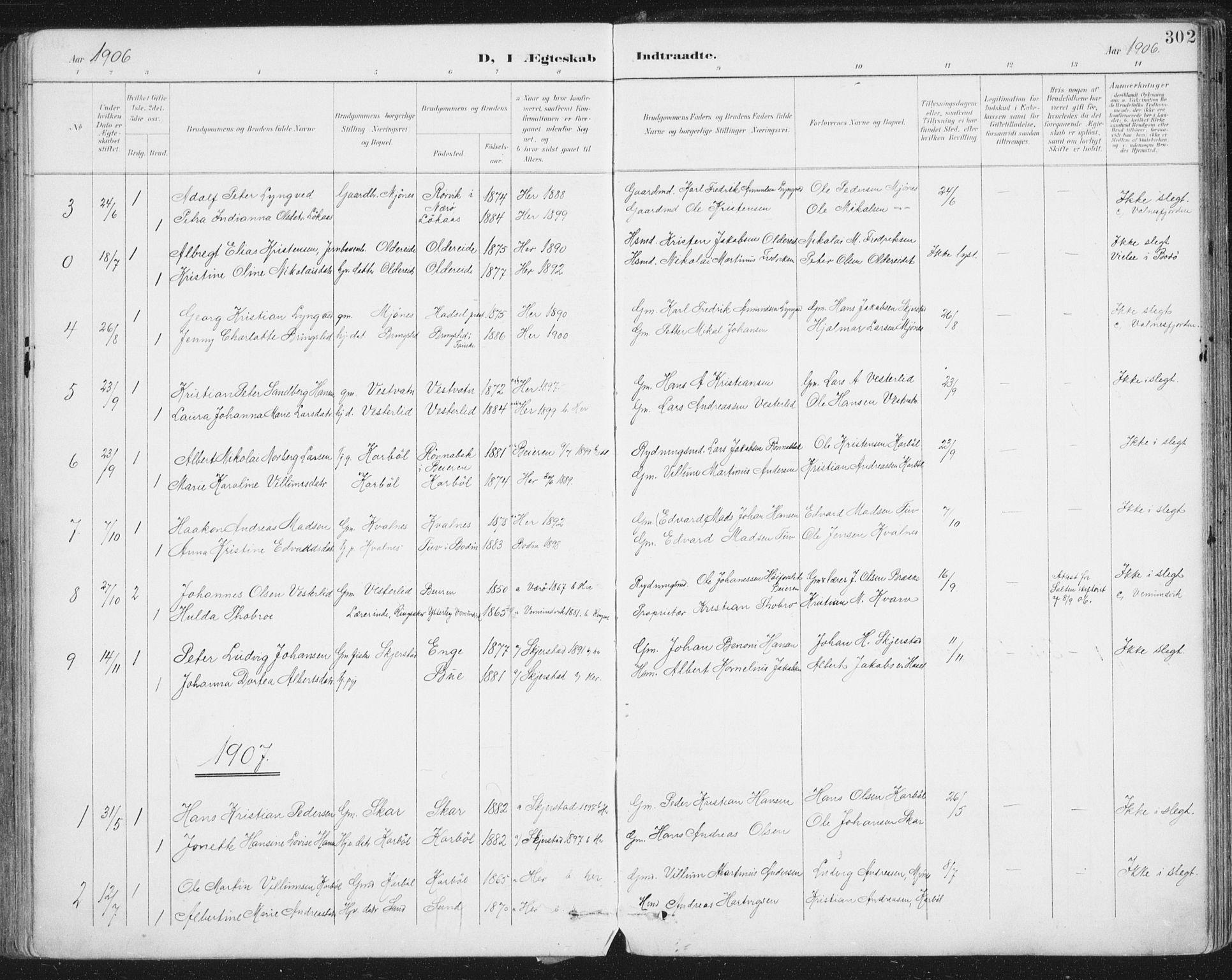 SAT, Ministerialprotokoller, klokkerbøker og fødselsregistre - Nordland, 852/L0741: Ministerialbok nr. 852A11, 1894-1917, s. 302
