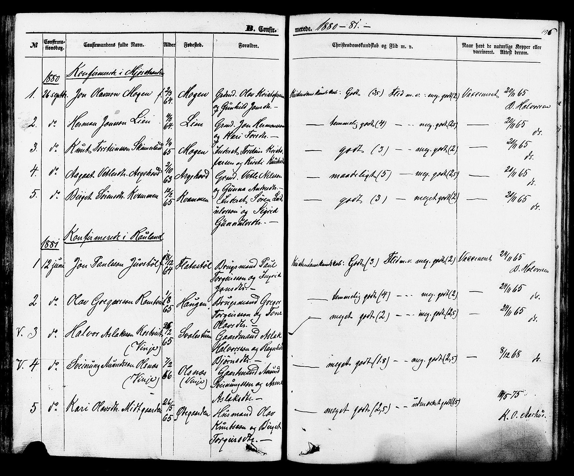 SAKO, Rauland kirkebøker, F/Fa/L0003: Ministerialbok nr. 3, 1859-1886, s. 196