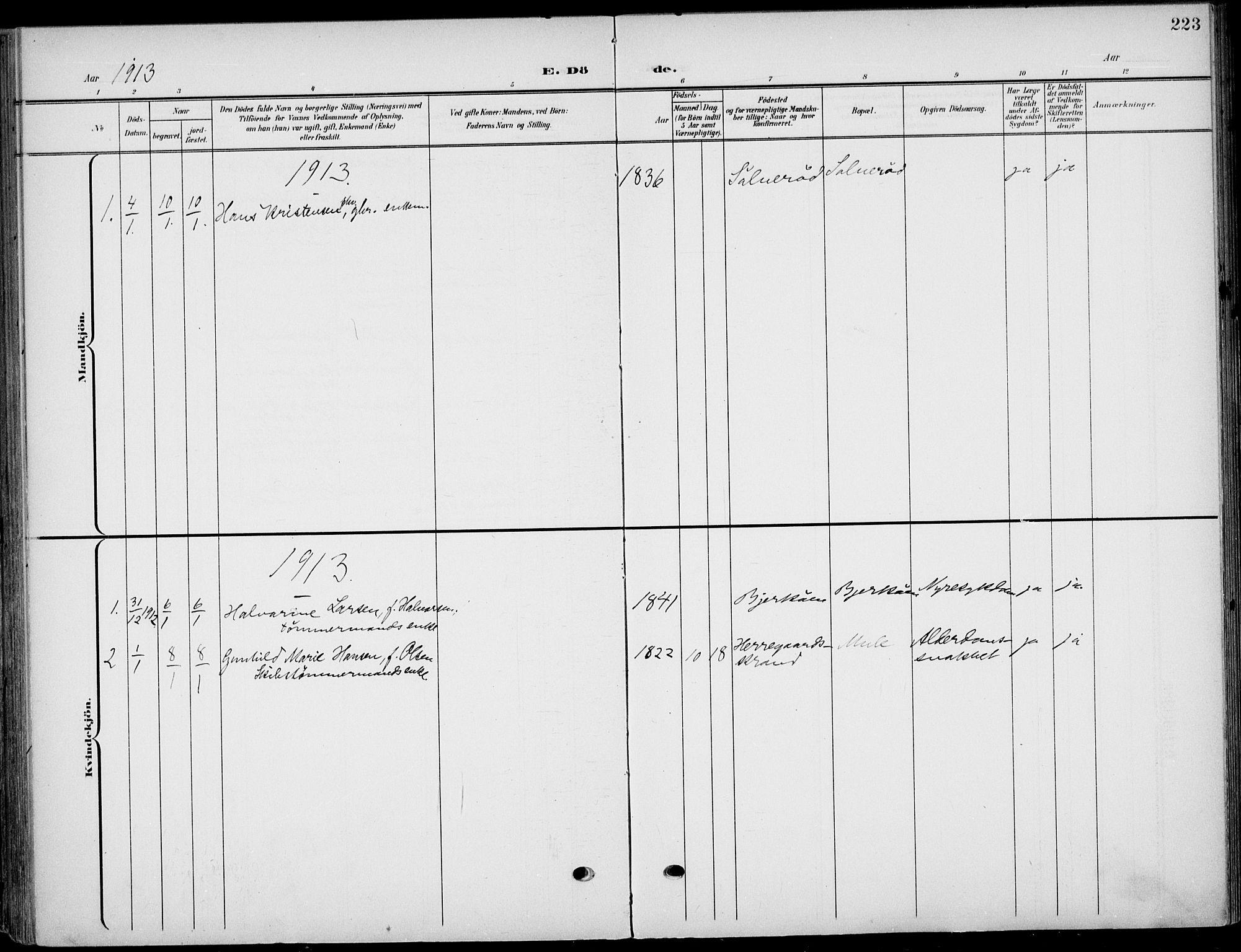 SAKO, Eidanger kirkebøker, F/Fa/L0013: Ministerialbok nr. 13, 1900-1913, s. 223