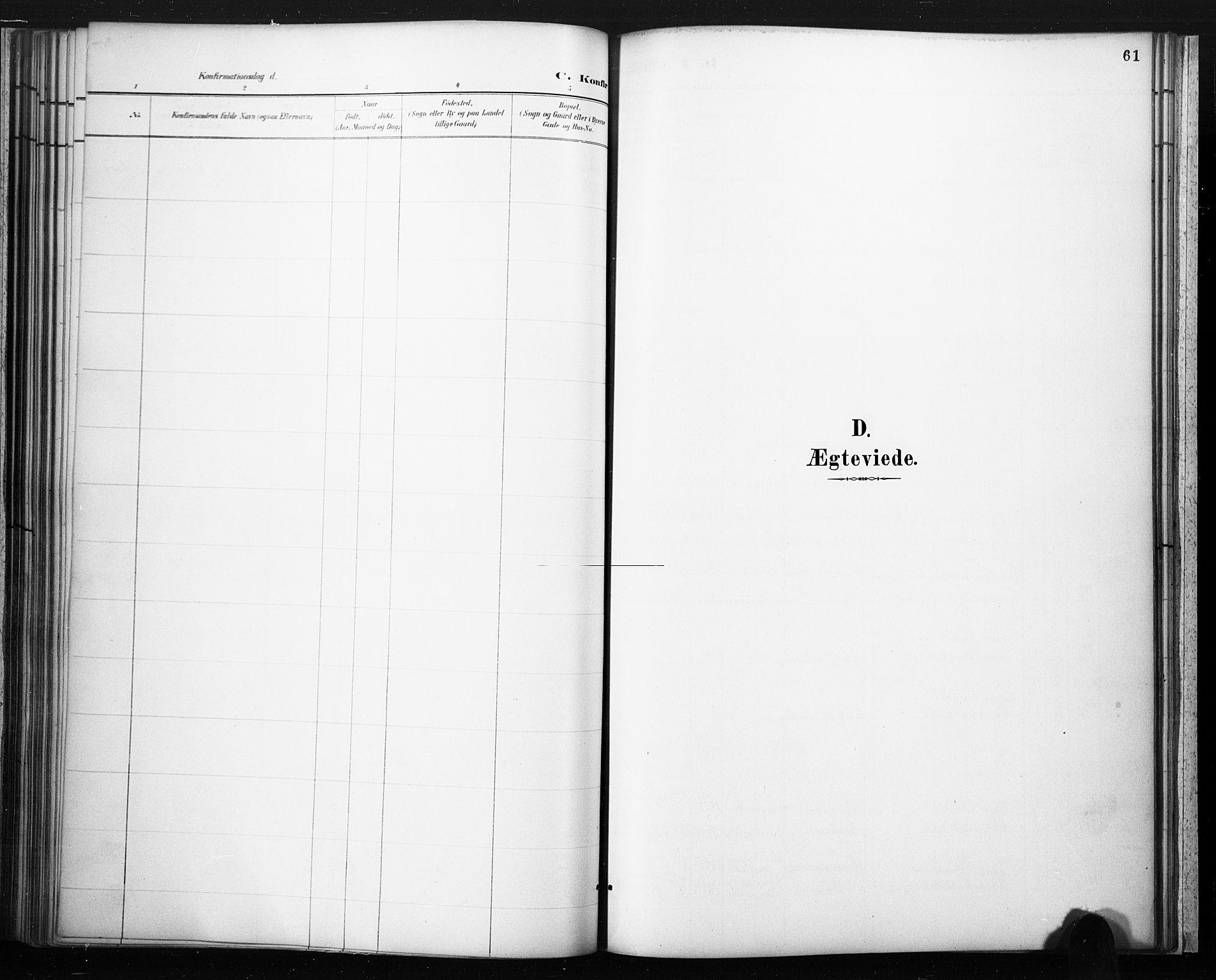 SAKO, Lårdal kirkebøker, F/Fc/L0002: Ministerialbok nr. III 2, 1887-1906, s. 61
