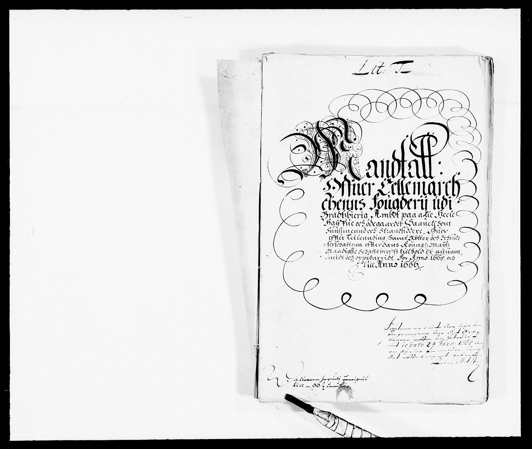 RA, Rentekammeret inntil 1814, Reviderte regnskaper, Fogderegnskap, R35/L2056: Fogderegnskap Øvre og Nedre Telemark, 1665, s. 9