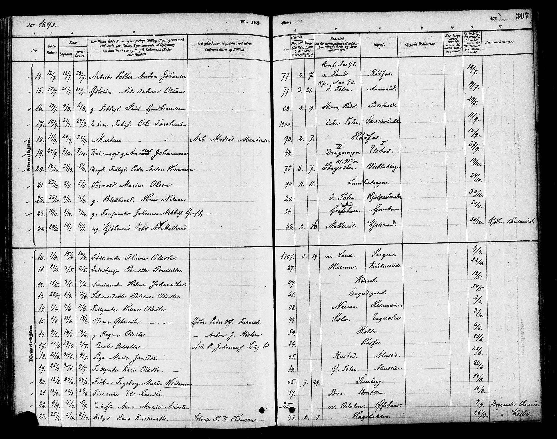 SAH, Vestre Toten prestekontor, H/Ha/Haa/L0009: Ministerialbok nr. 9, 1878-1894, s. 307