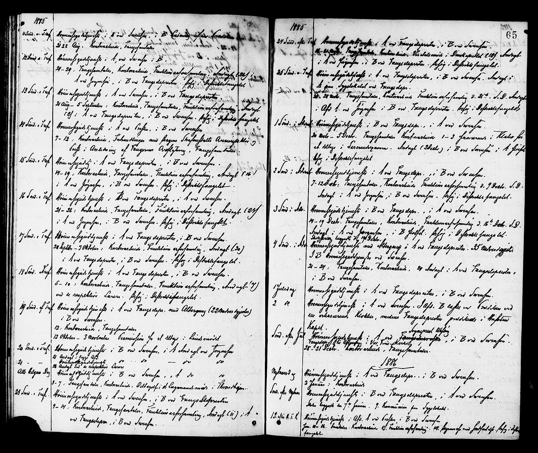SAT, Ministerialprotokoller, klokkerbøker og fødselsregistre - Sør-Trøndelag, 624/L0482: Ministerialbok nr. 624A03, 1870-1918, s. 65