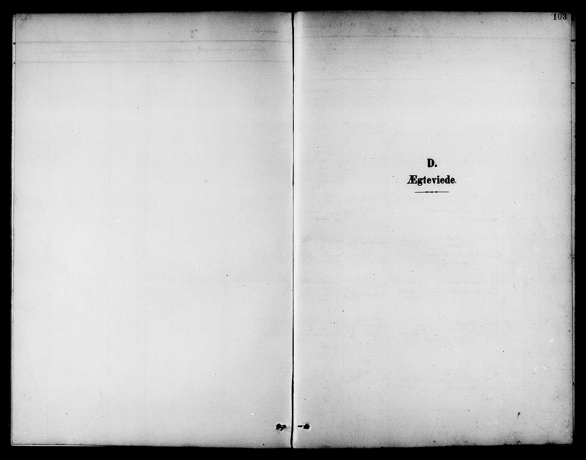 SAT, Ministerialprotokoller, klokkerbøker og fødselsregistre - Nord-Trøndelag, 742/L0412: Klokkerbok nr. 742C03, 1898-1910, s. 103