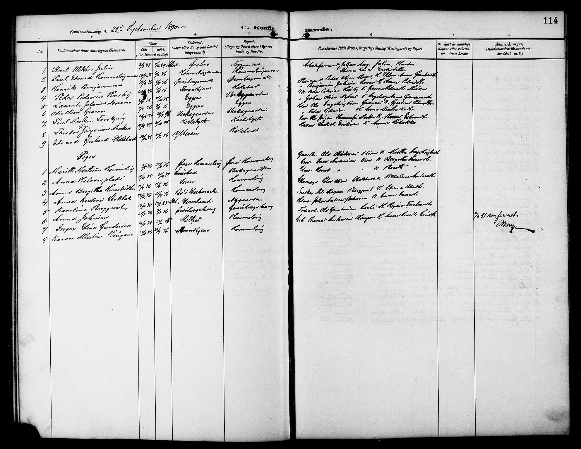 SAT, Ministerialprotokoller, klokkerbøker og fødselsregistre - Sør-Trøndelag, 617/L0431: Klokkerbok nr. 617C01, 1889-1910, s. 114