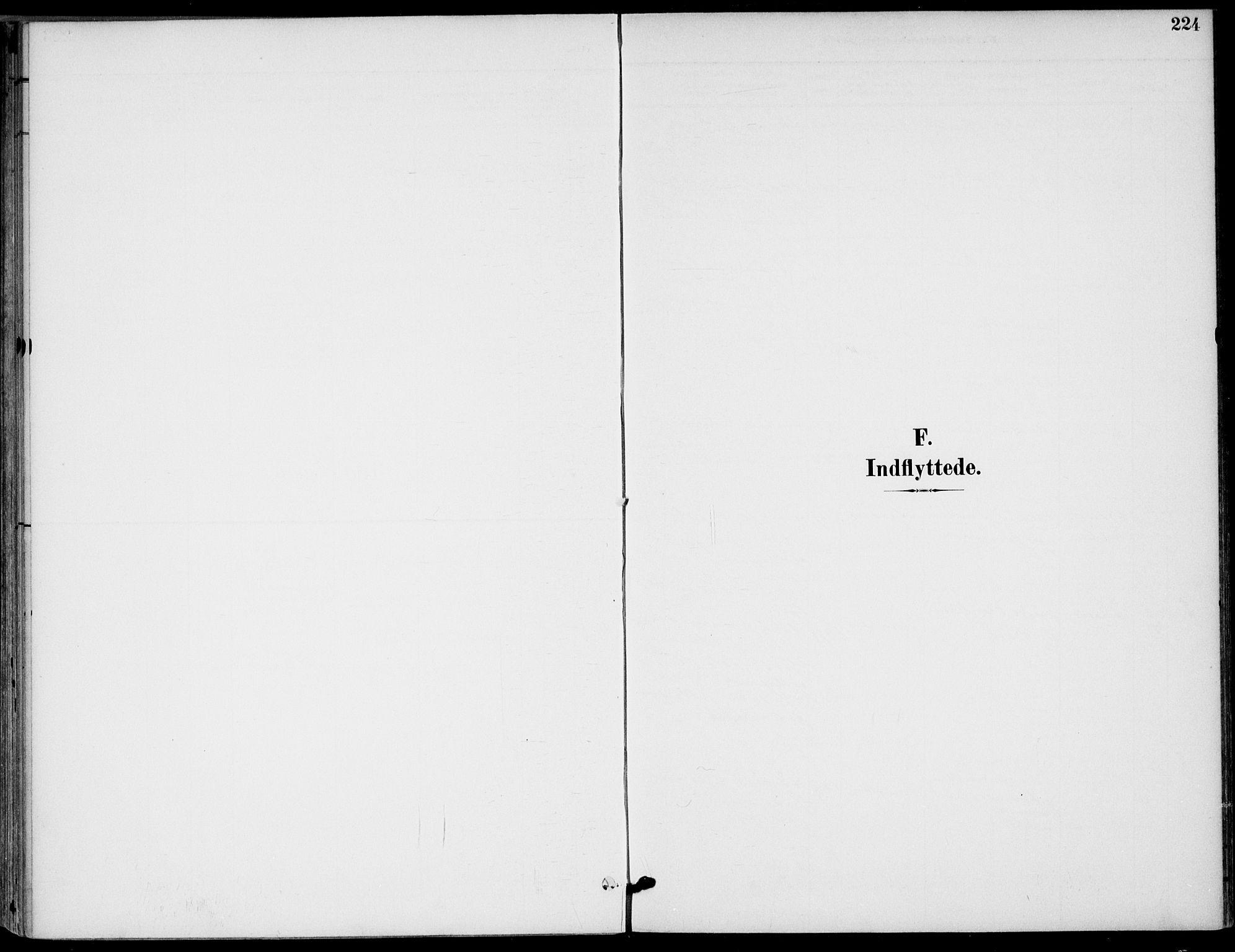 SAKO, Drangedal kirkebøker, F/Fa/L0012: Ministerialbok nr. 12, 1895-1905, s. 224