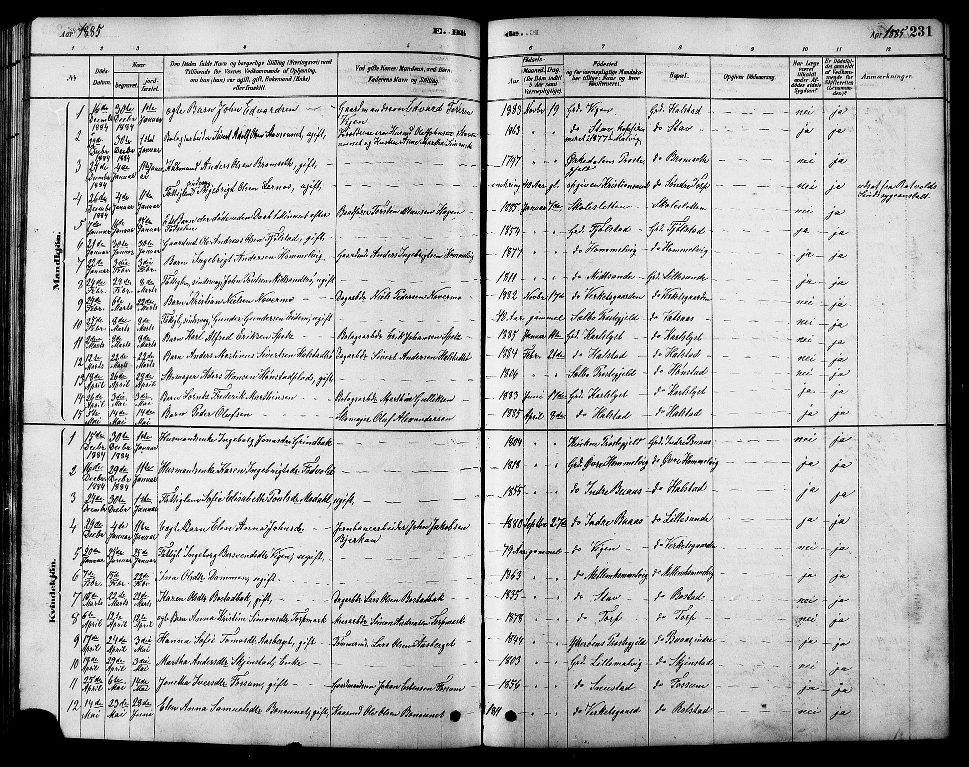 SAT, Ministerialprotokoller, klokkerbøker og fødselsregistre - Sør-Trøndelag, 616/L0423: Klokkerbok nr. 616C06, 1878-1903, s. 231