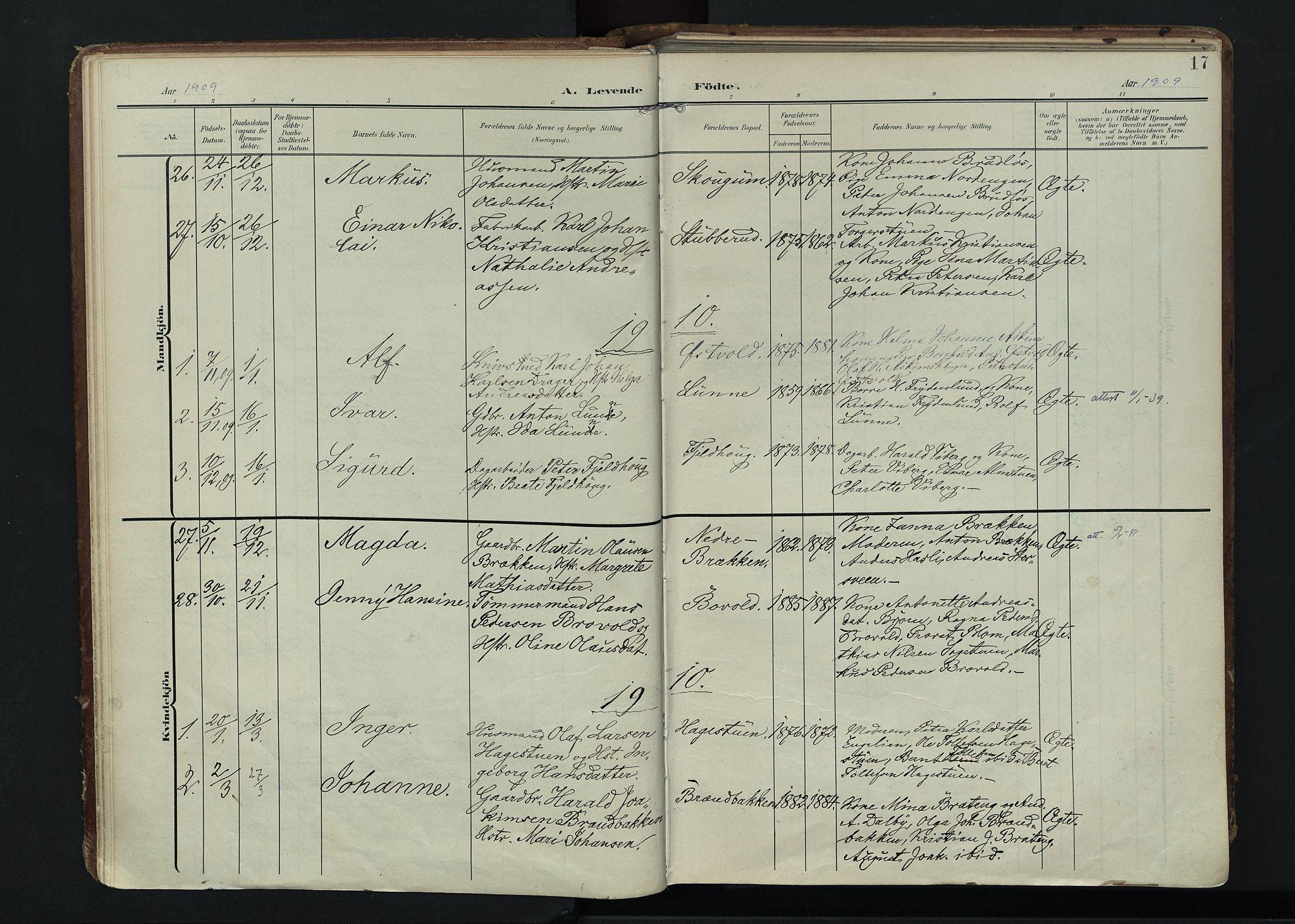 SAH, Vardal prestekontor, H/Ha/Haa/L0020: Ministerialbok nr. 20, 1907-1921, s. 17