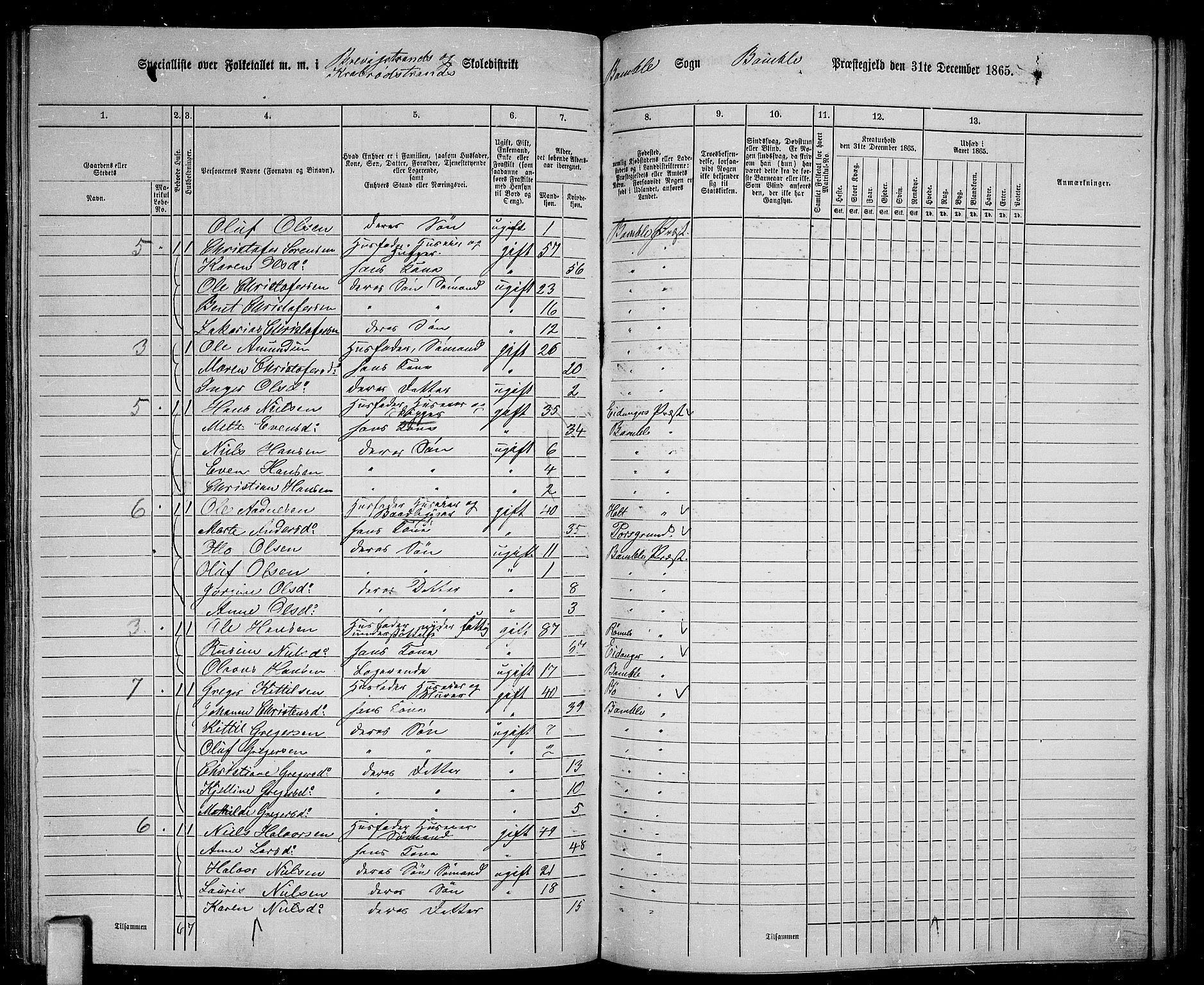 RA, Folketelling 1865 for 0814P Bamble prestegjeld, 1865, s. 139