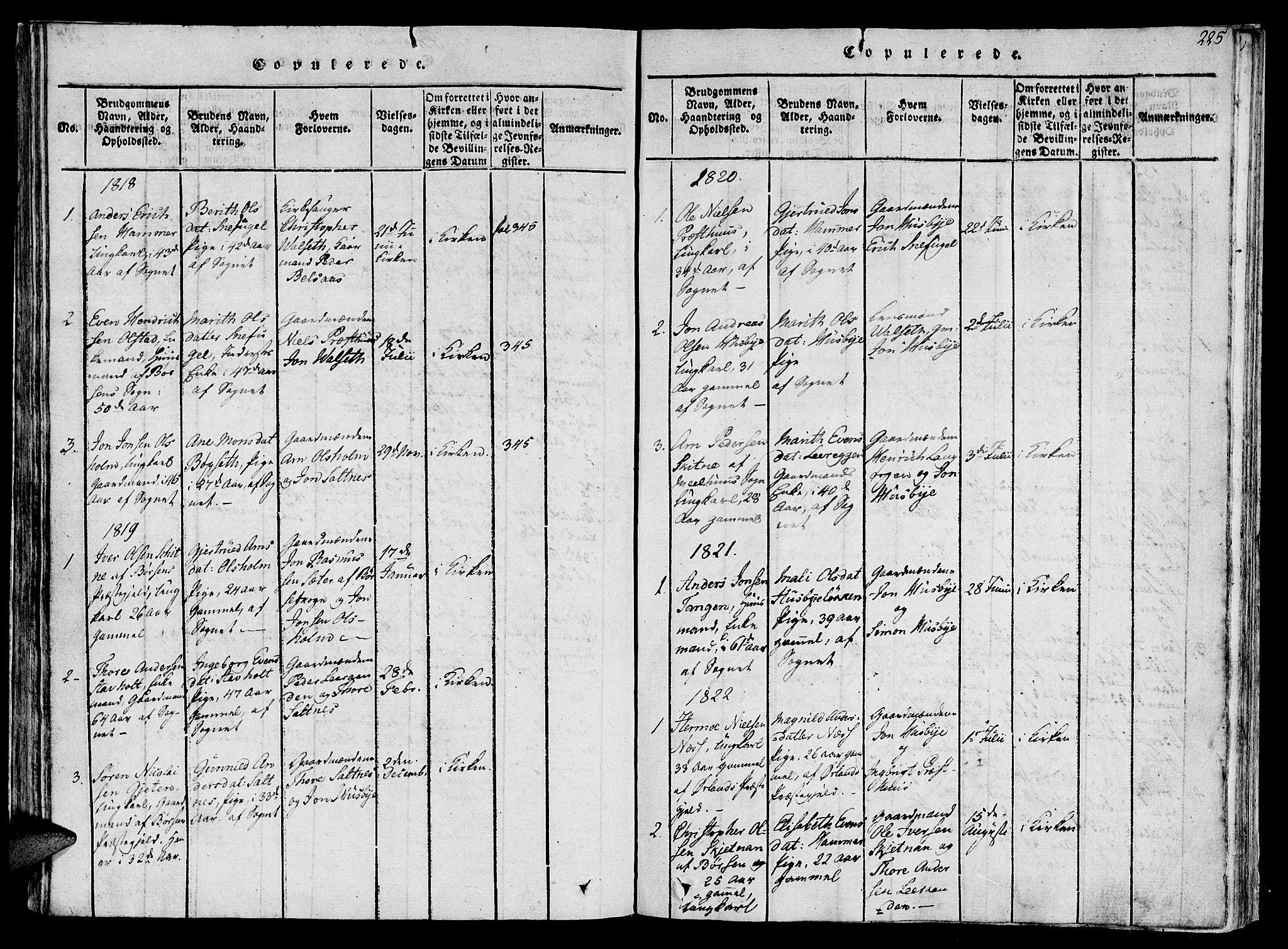 SAT, Ministerialprotokoller, klokkerbøker og fødselsregistre - Sør-Trøndelag, 612/L0373: Ministerialbok nr. 612A06 /2, 1816-1828, s. 225