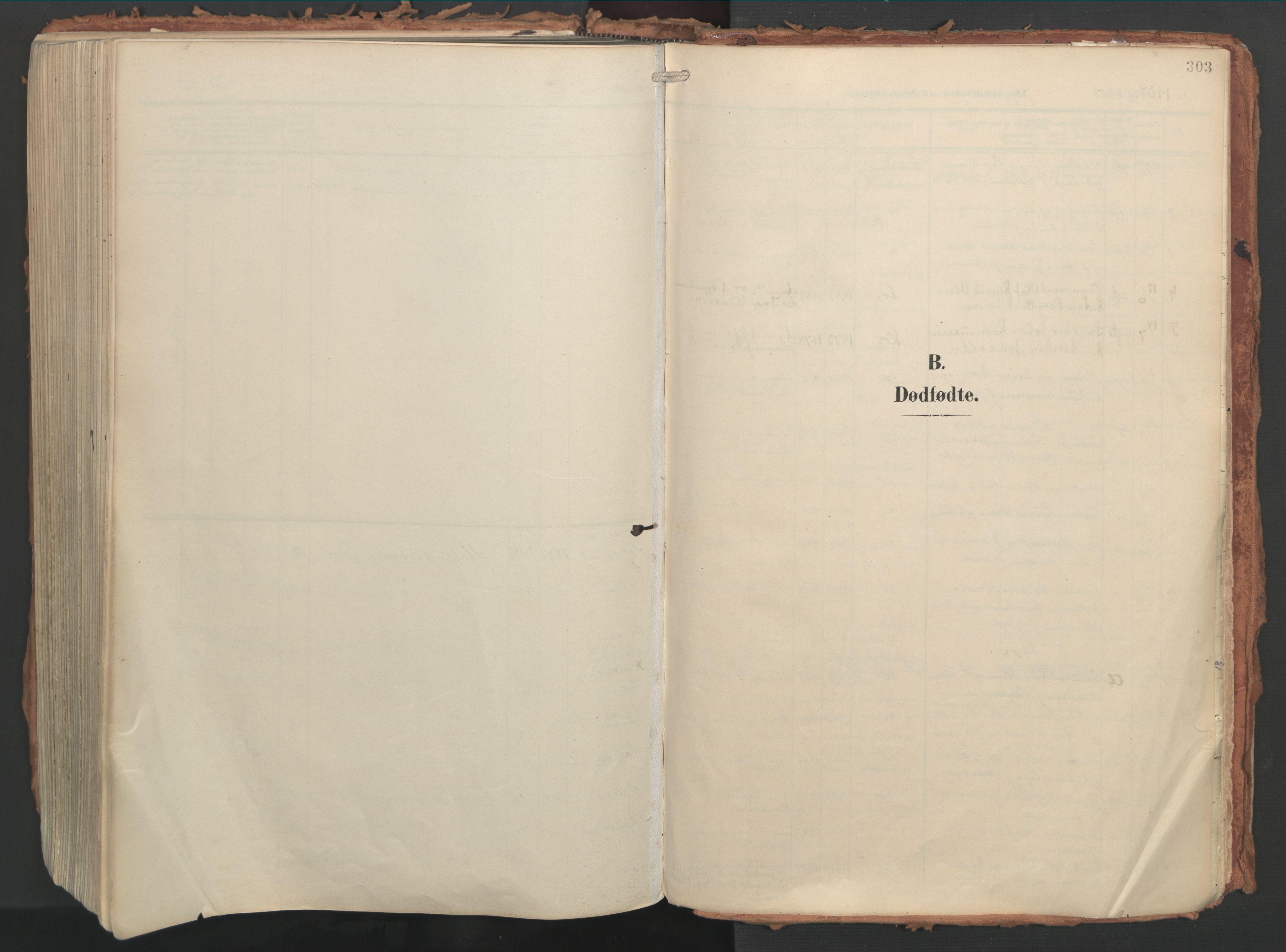 SAT, Ministerialprotokoller, klokkerbøker og fødselsregistre - Møre og Romsdal, 529/L0460: Ministerialbok nr. 529A10, 1906-1917, s. 303