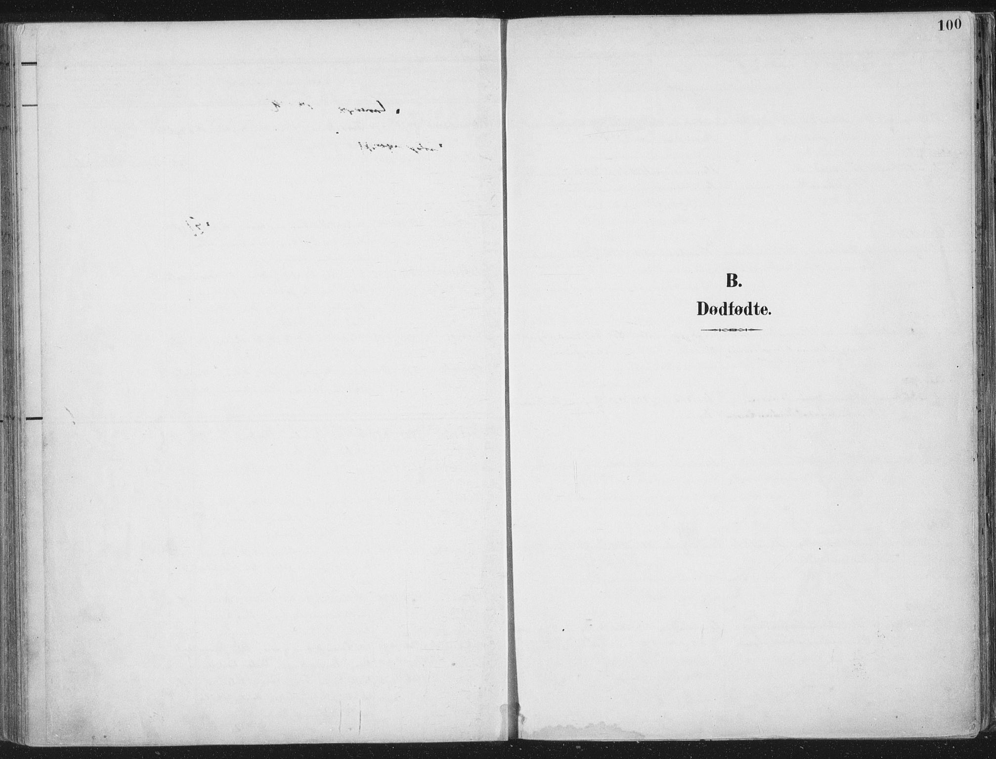 SAT, Ministerialprotokoller, klokkerbøker og fødselsregistre - Nord-Trøndelag, 709/L0082: Ministerialbok nr. 709A22, 1896-1916, s. 100