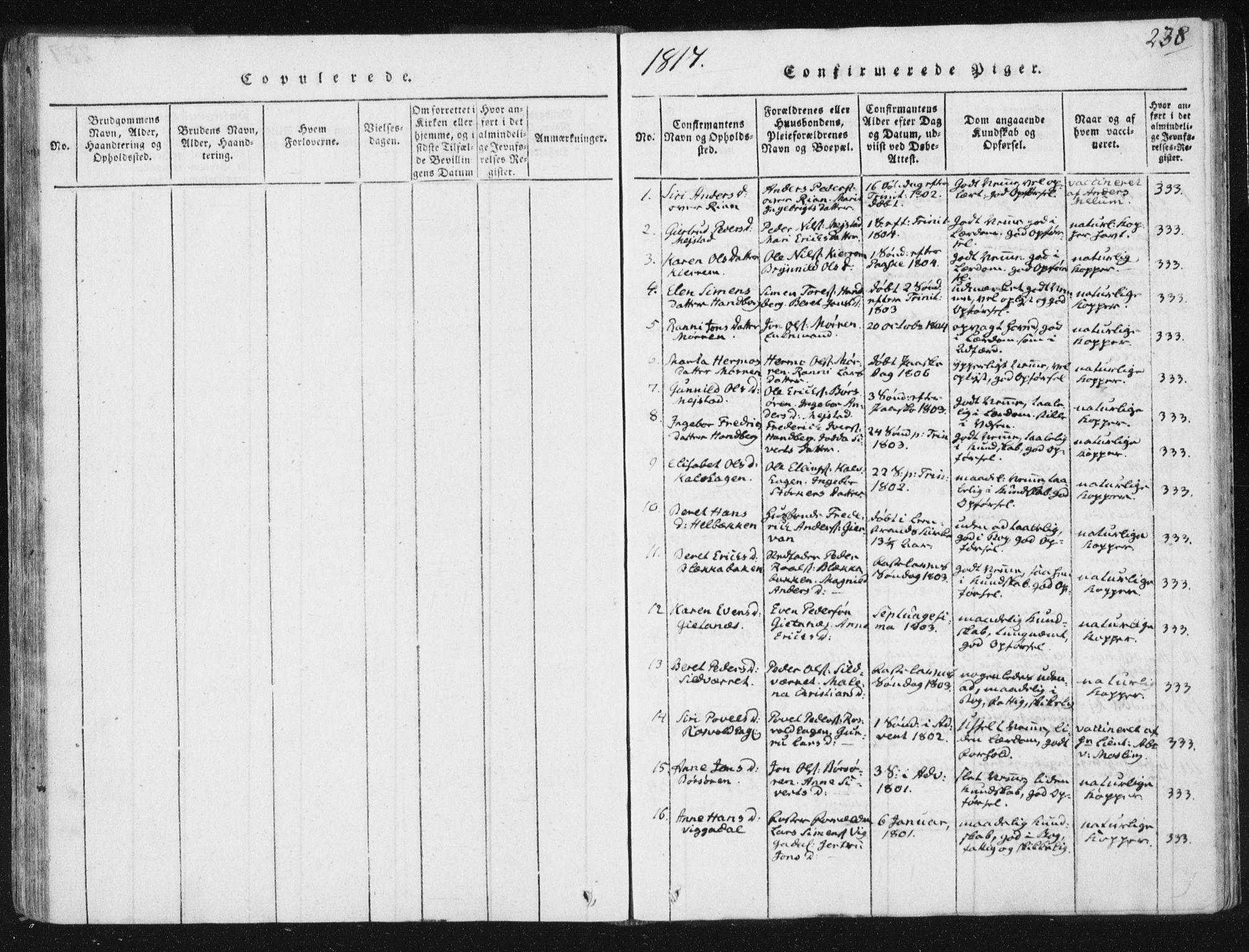 SAT, Ministerialprotokoller, klokkerbøker og fødselsregistre - Sør-Trøndelag, 665/L0770: Ministerialbok nr. 665A05, 1817-1829, s. 238